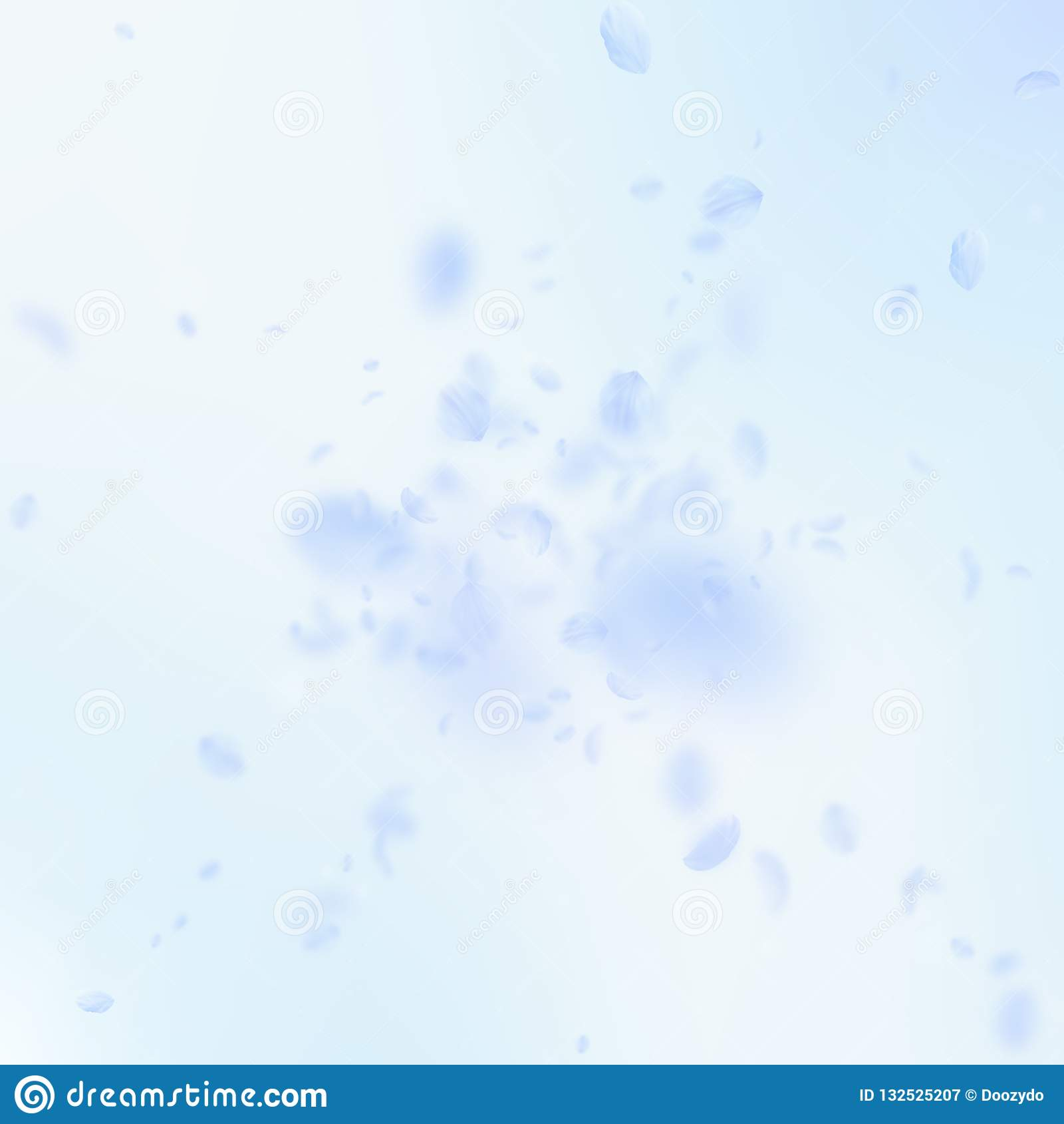 Light Blue Flower Petals Falling Down Noteworthy Stock