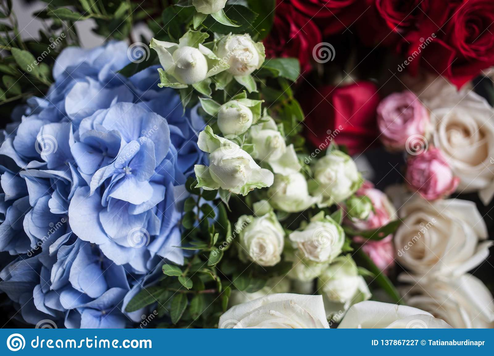 Light Blue Hydrangea And Red And White Roses The Bride S Bouquet Mother S Day And March 8 Stock Image Image Of Arrangement Beautiful 137867227