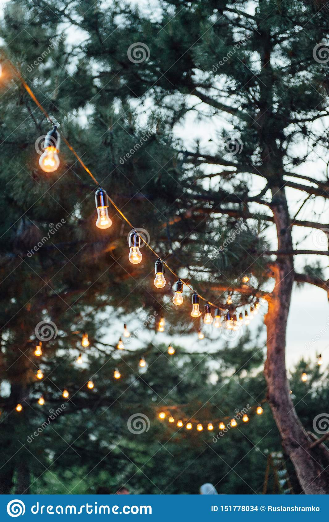 Light Bulb Decor In Outdoor Party Wedding Party Stock Photo Image Of Decorate Decor 151778034