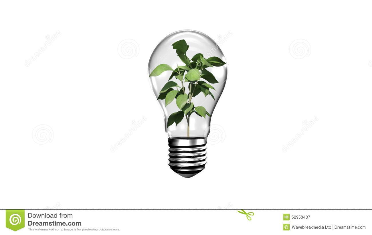 Light Bulb With Growing Plant Stock Video - Video of clean
