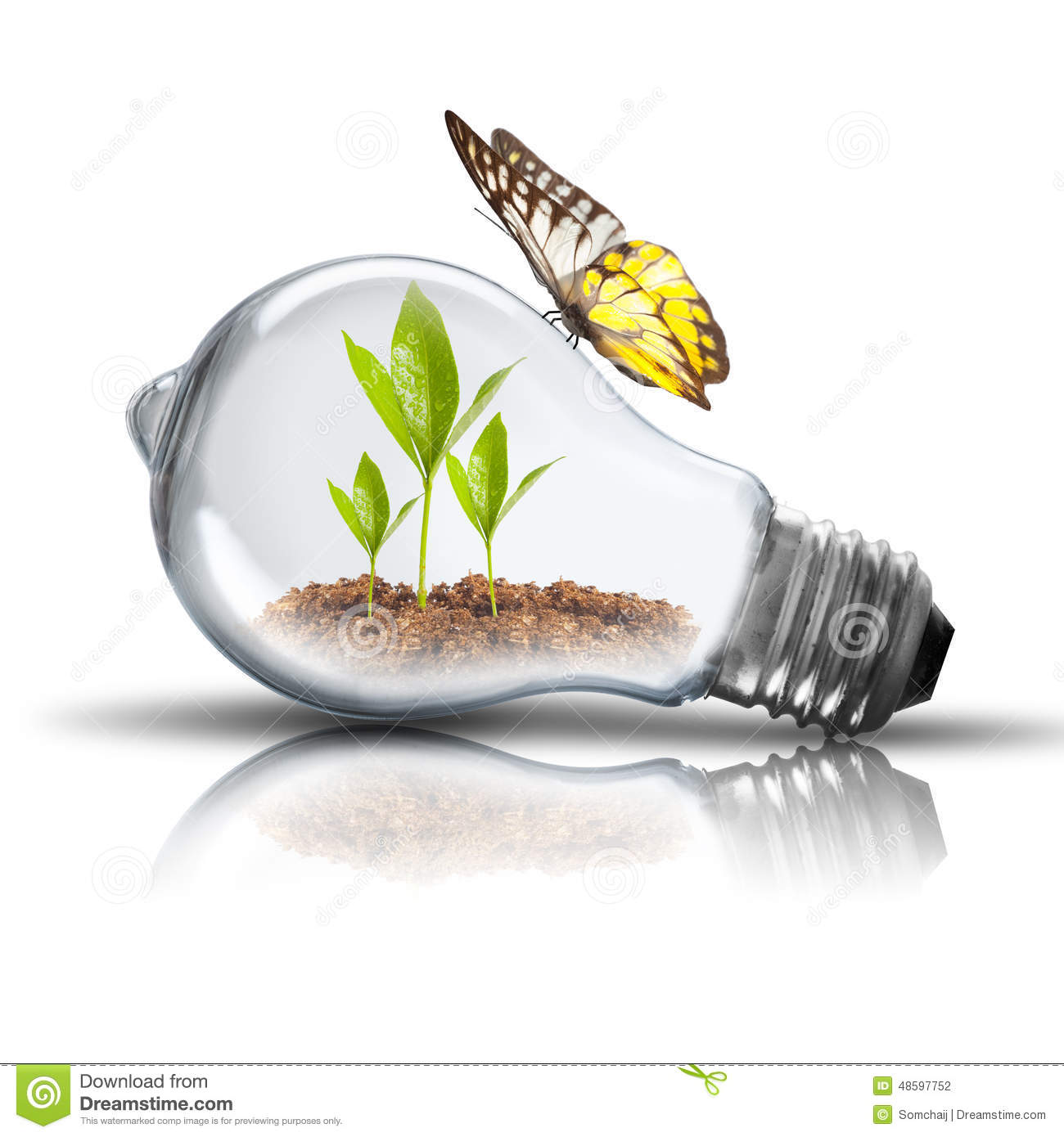 Light bulb with soil and green plant sprout inside and for Soil and green