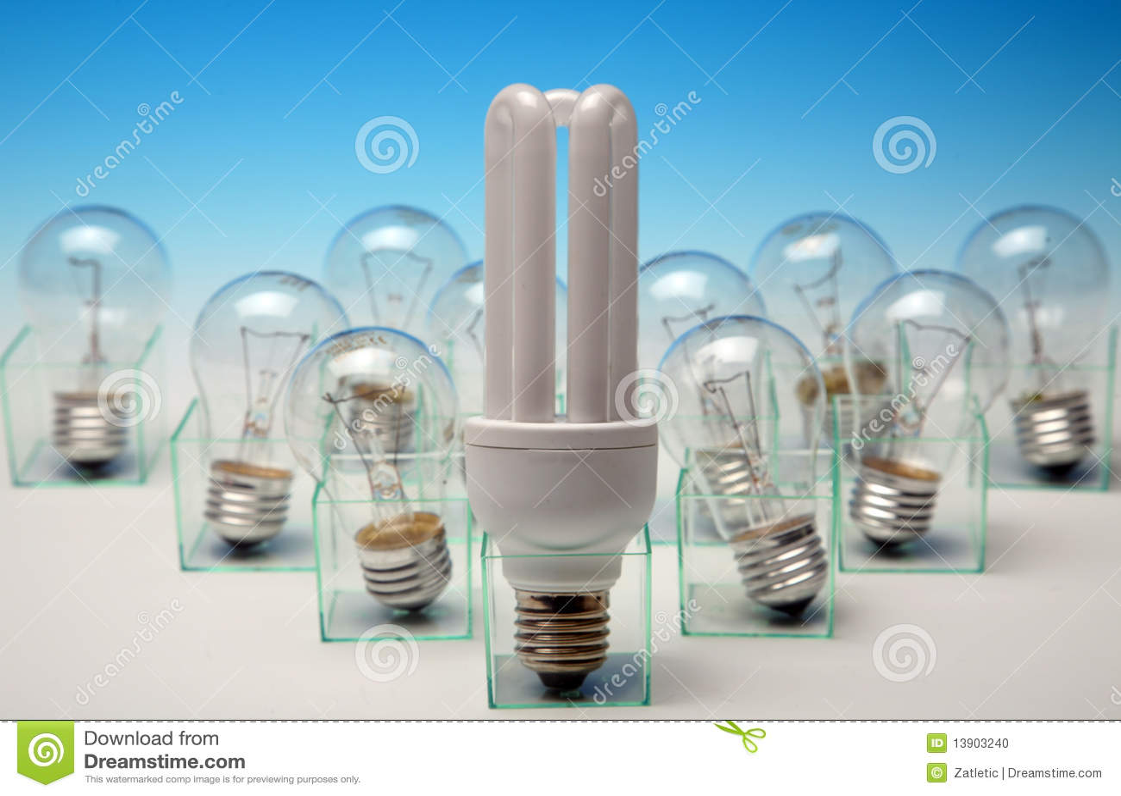 Light Bulbs Stock Photo Image 13903240