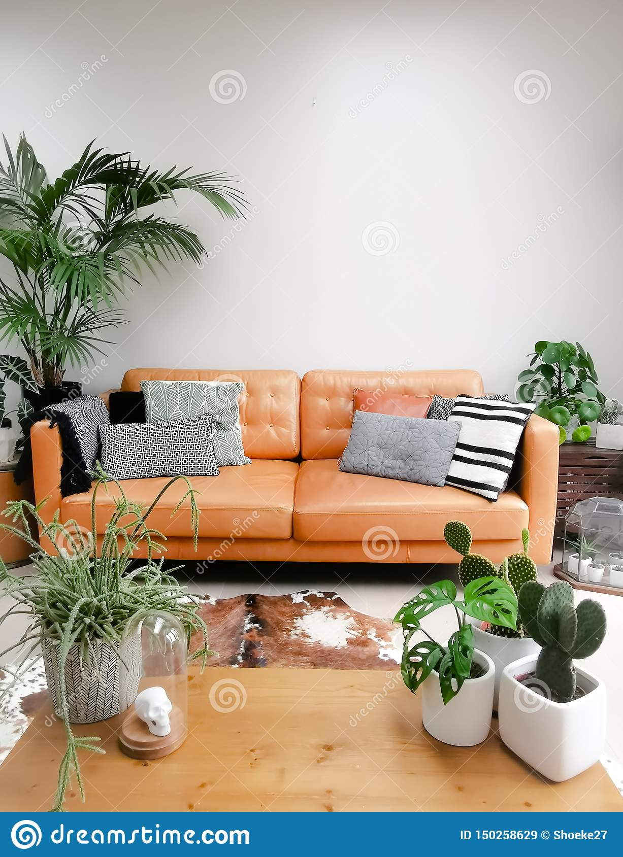 Swell Light Modern Living Room With Brown Leather Couch Cowhide Camellatalisay Diy Chair Ideas Camellatalisaycom