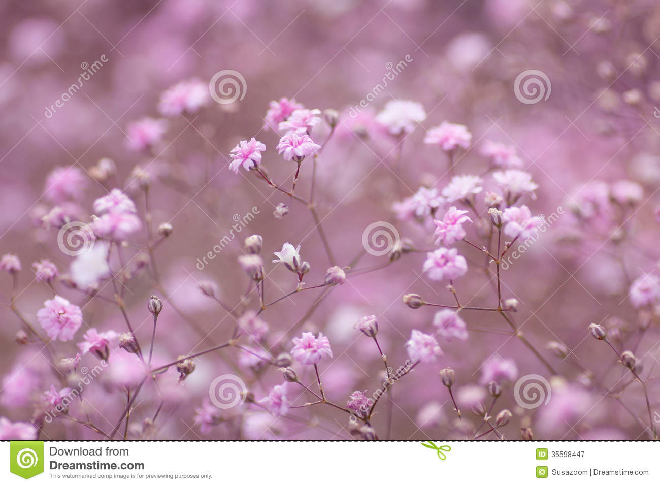 light pink floral background - photo #46