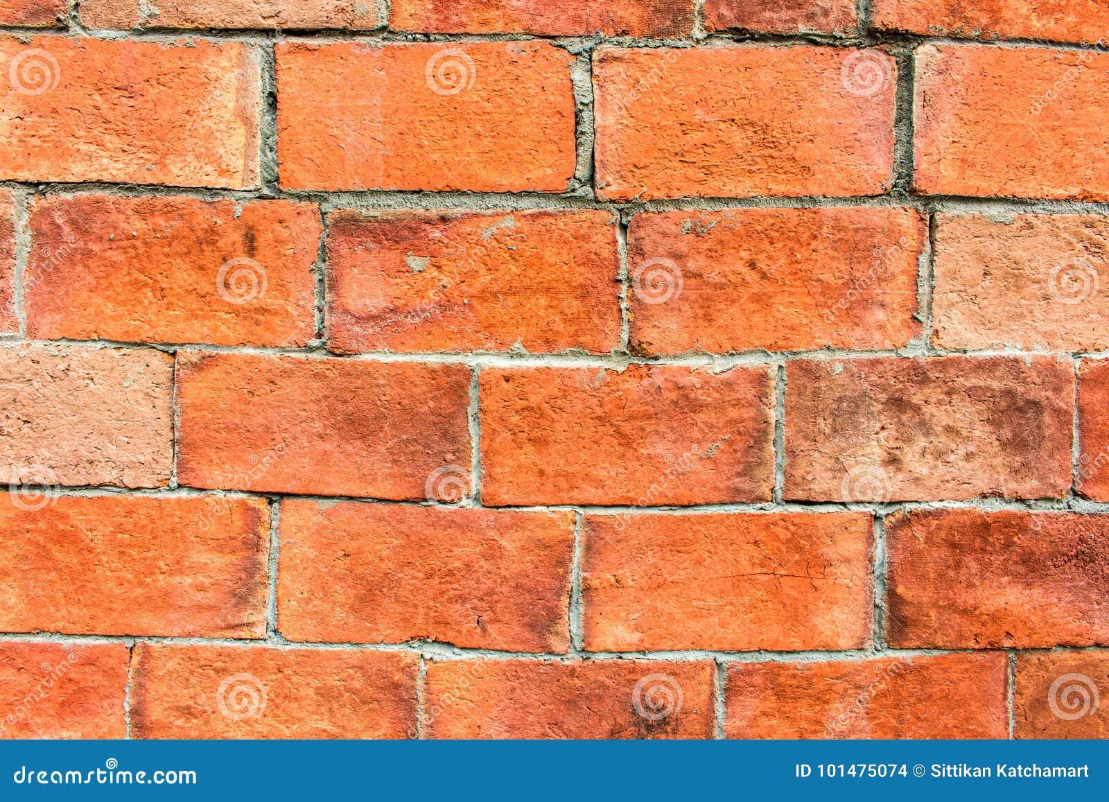 Z Brick Flooring : The floor brick of texture stock photo image design