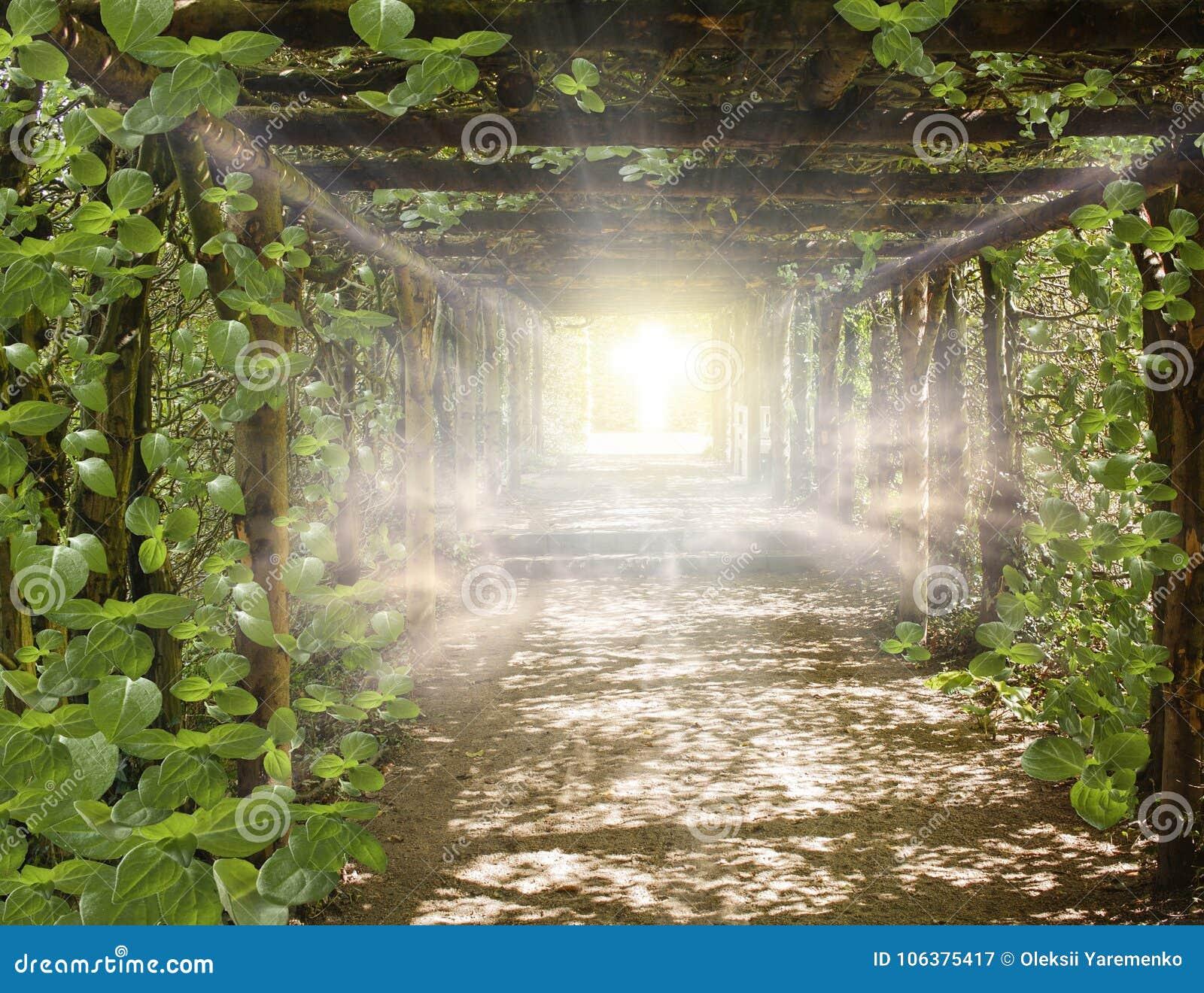 Light in sky . Way to GoCosmic healing energy .