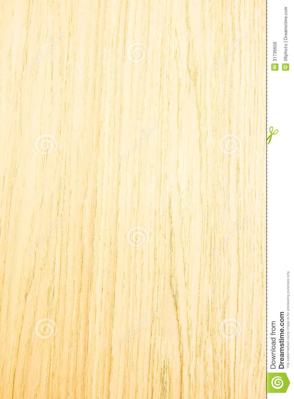 Light Wood Texture Stock Photo Image Of Color Space