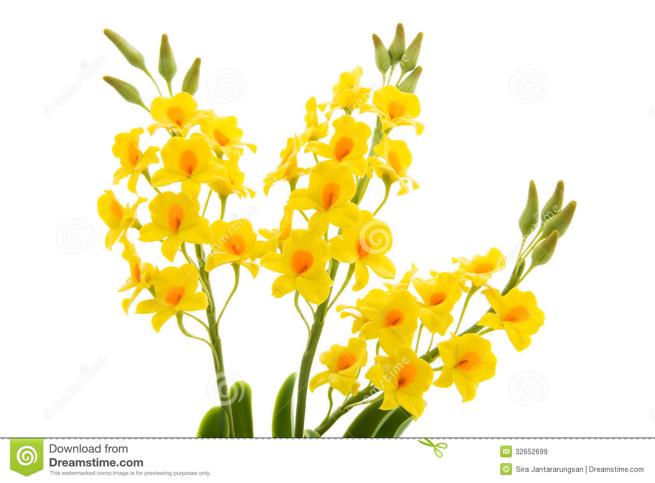 Light yellow orchid handmade flowers isolated on white background light yellow orchid handmade flowers isolated on white background royalty free stock images mightylinksfo