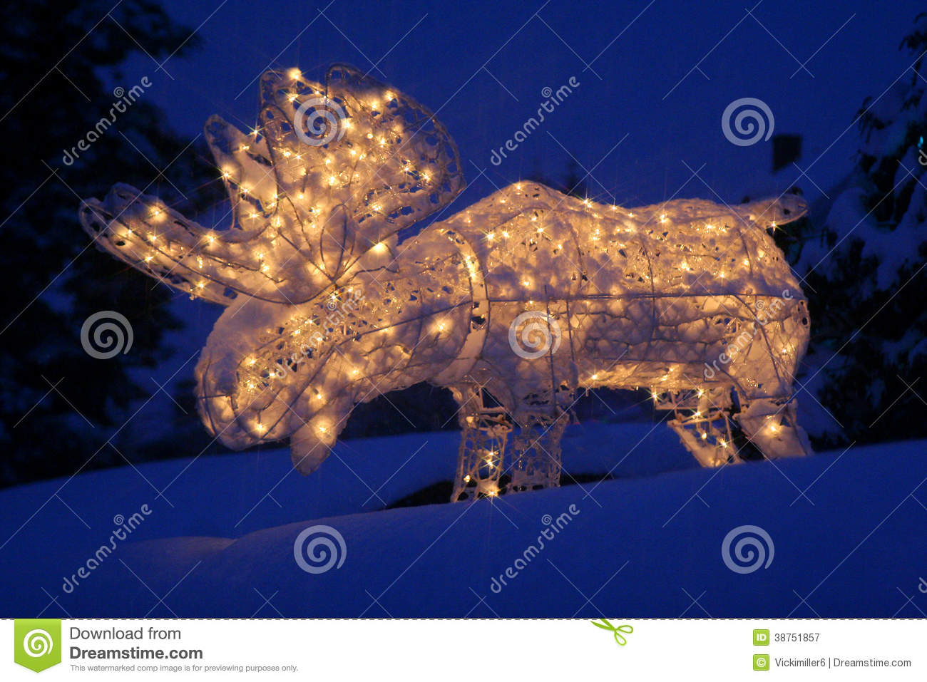 Lighted Moose At Christmas Stock Image Image Of Yard 38751857