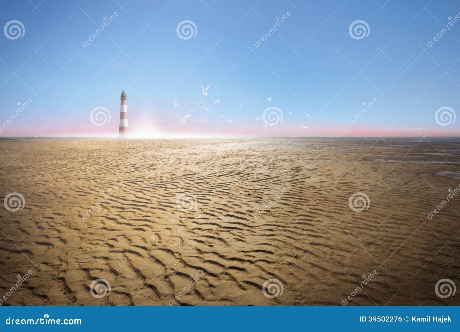 Lighthouse at Ebb Tide Coast and Sea Gulls
