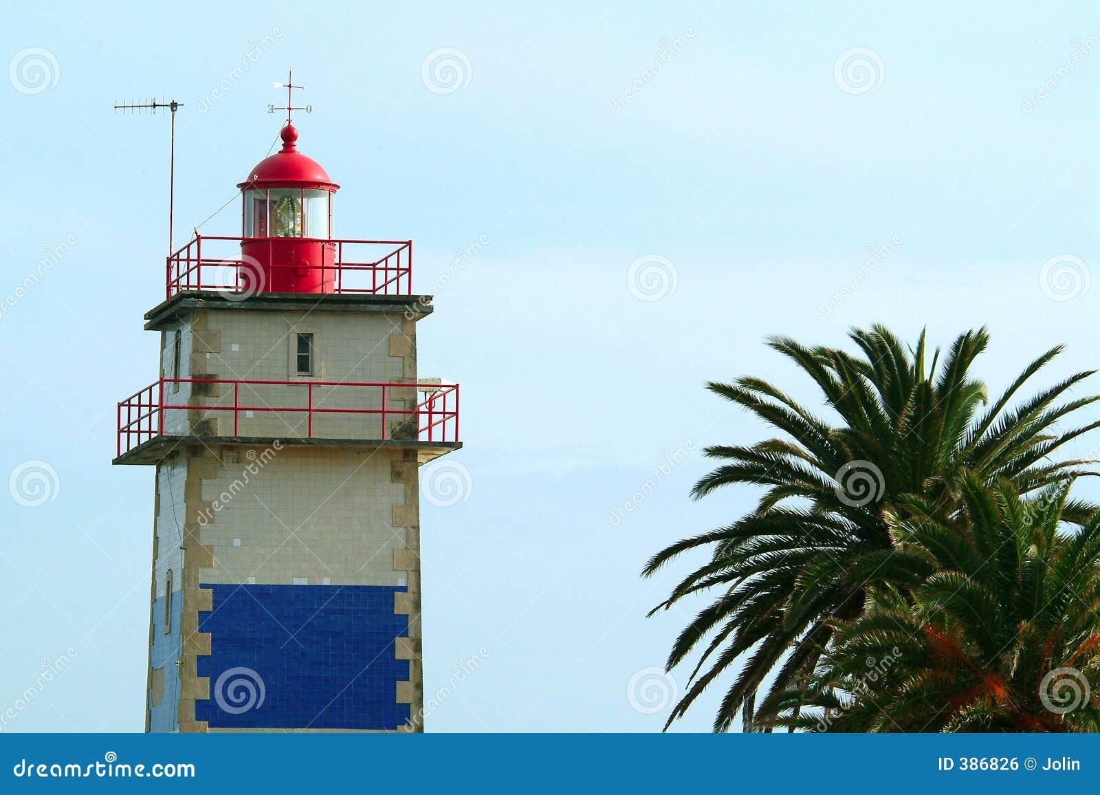 Lighthouse palm