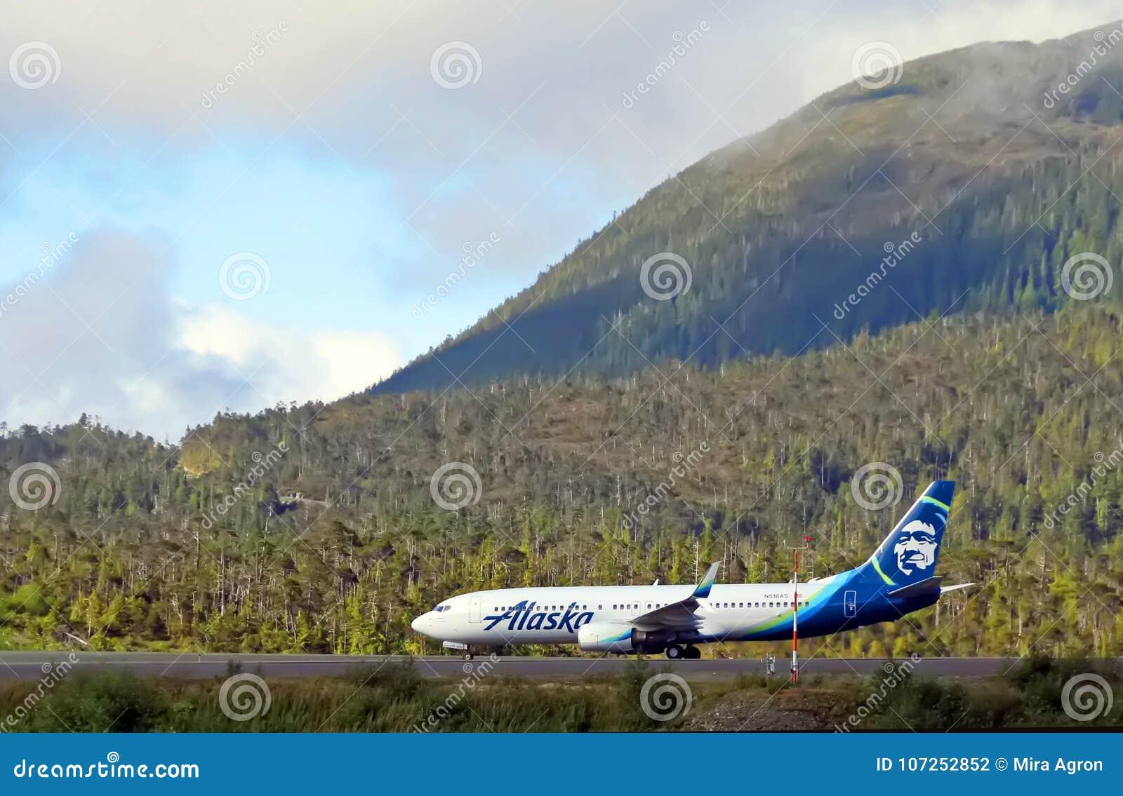 Ligne aérienne de l Alaska avec la vue scénique