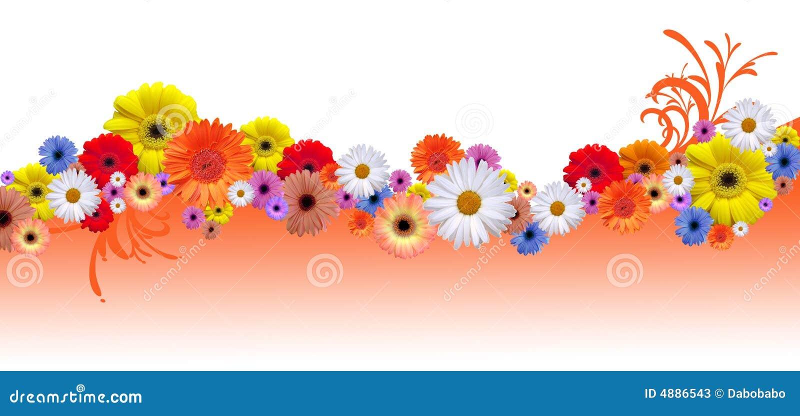 Ligne de fleur photos stock image 4886543 for Ligne de fleurs