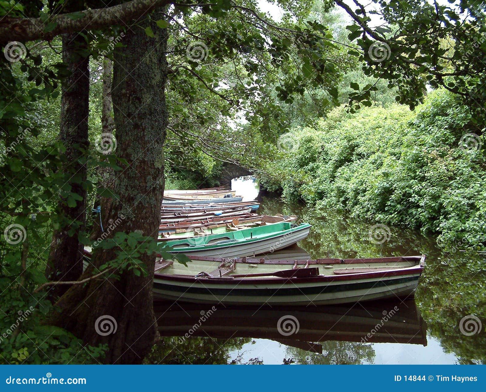 Ligne de ligne de ligne des bateaux