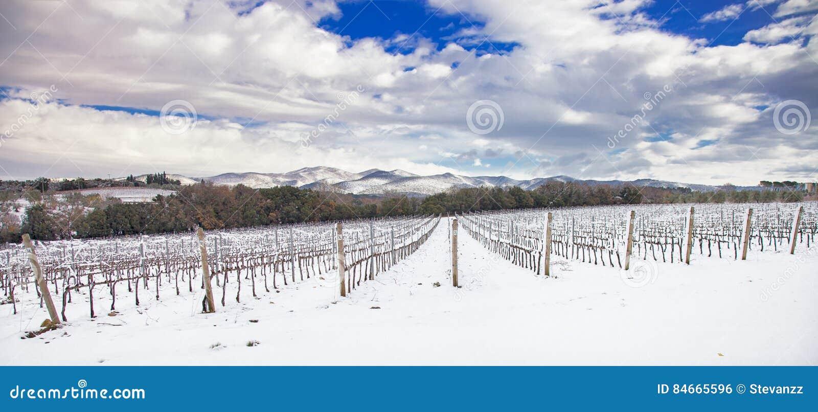 Lignes de vignobles couvertes par la neige en hiver Chianti, Florence, AIE