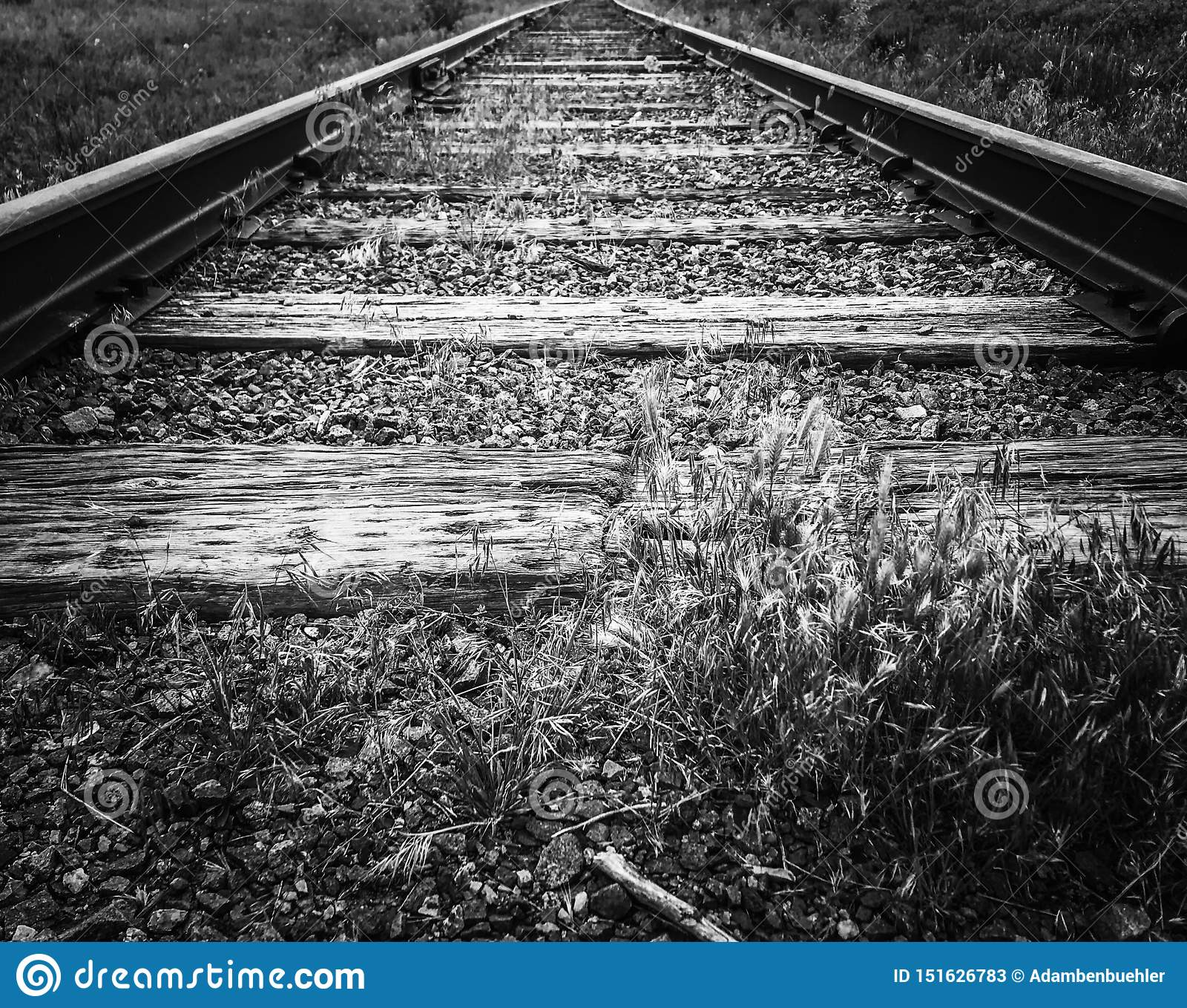 Lignes de voies ferrées principales