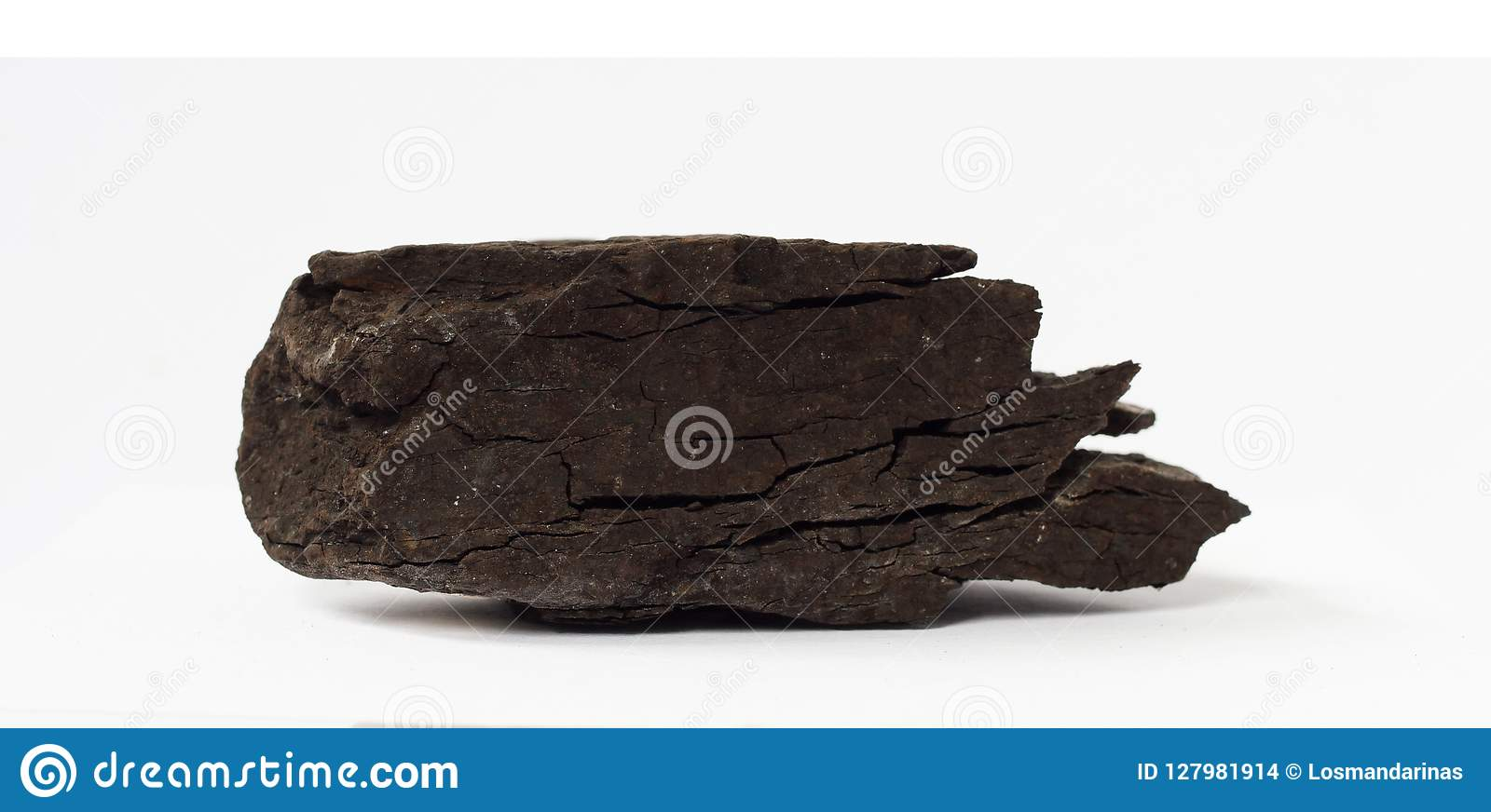 Lignite or brown coal mineral on white background