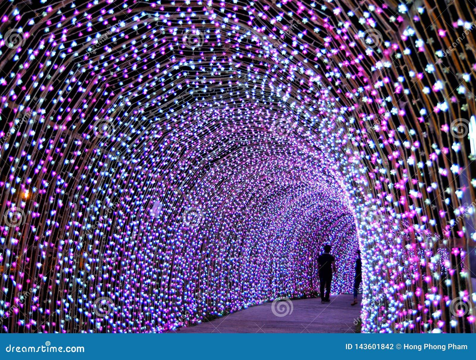 Ligting tunnel i jul