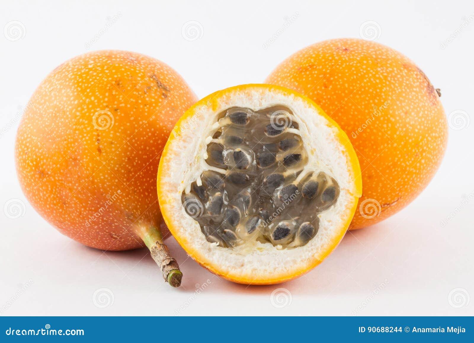 Ligularis della passiflora della granadiglia dolce