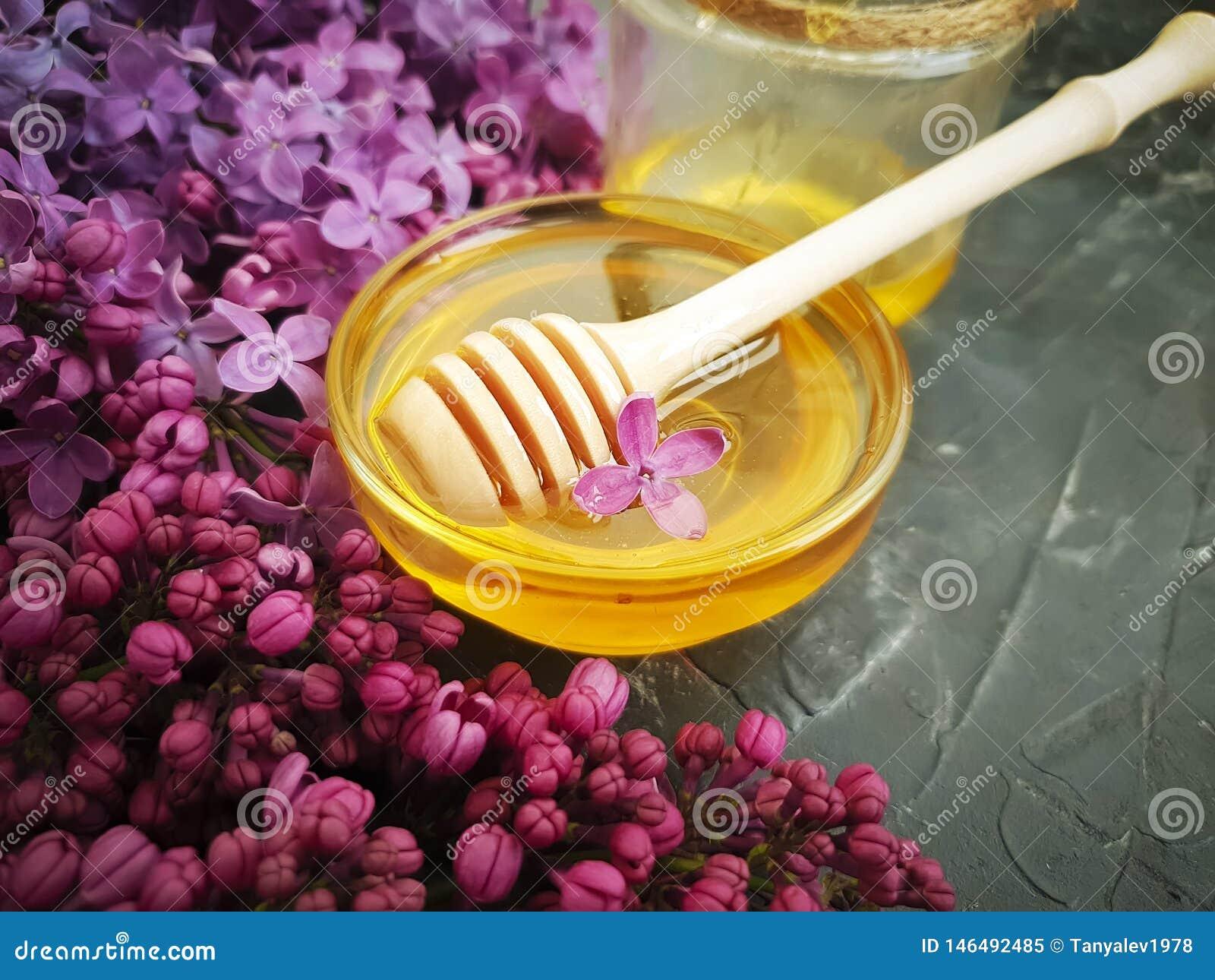 Lila Blume des Honigs geschmackvoll auf schwarzem konkretem Hintergrund, Zusammensetzung