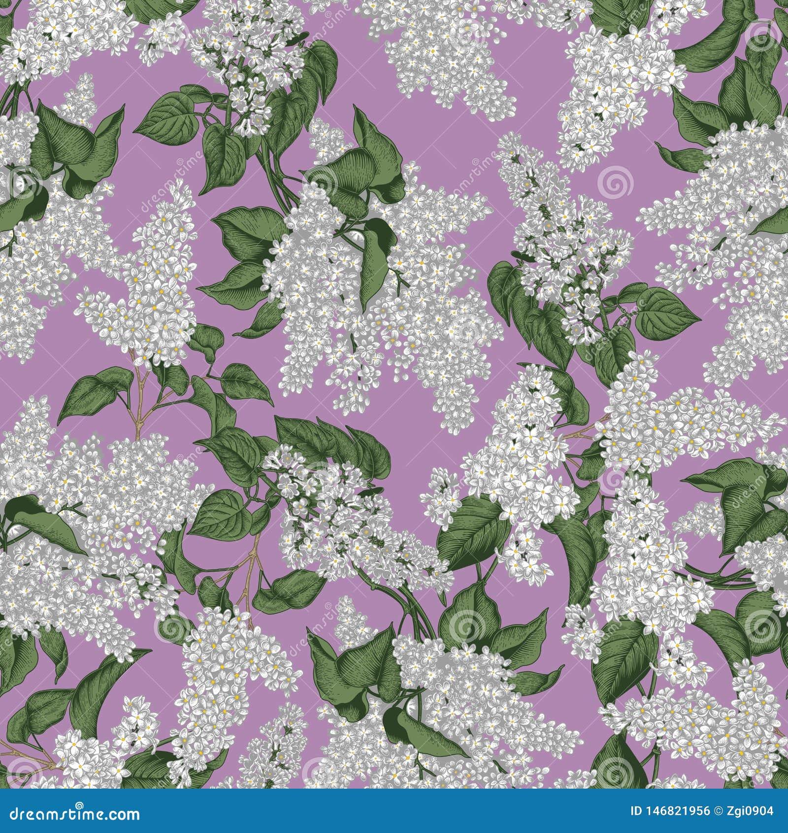 Lila Modelo incons?til del vector en estilo del vintage Apenas llovido encendido Arbustos florecientes Plantas en parques y jardi
