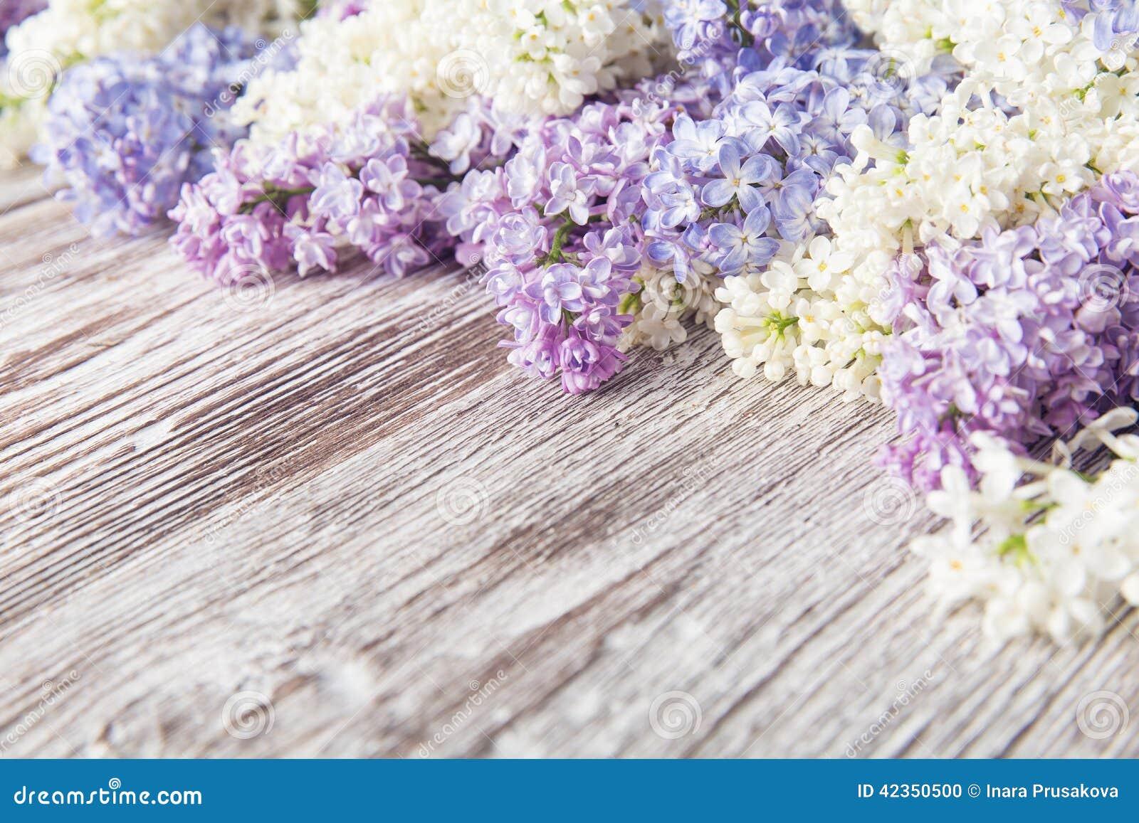 Lilac Bloemen Op Houten Achtergrond, Bloesemtak Op Uitstekend Hout ...