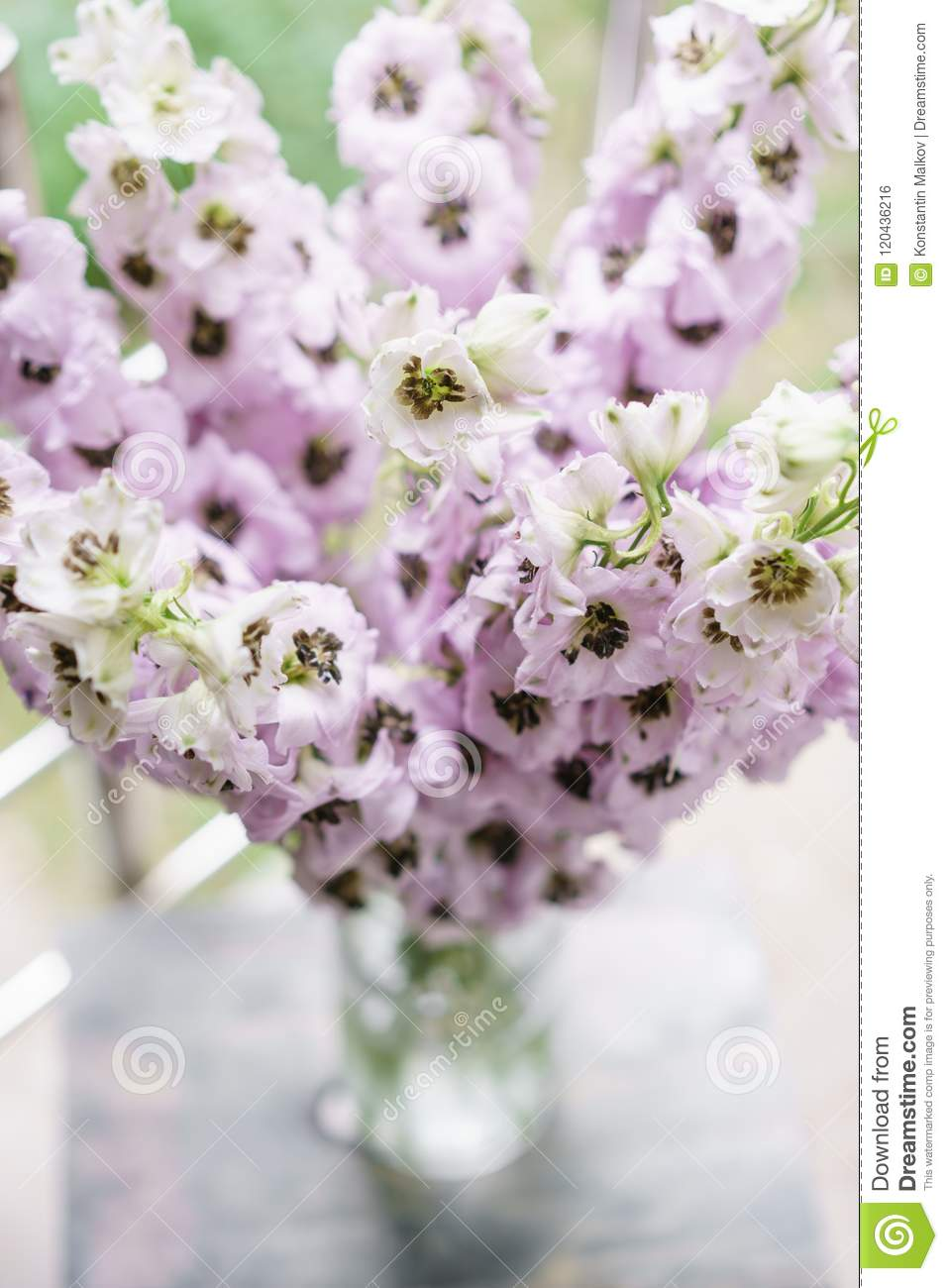 Lilac Delphiniums In Glass Vase On Gray Table Summer Wallpaper Selective Focus