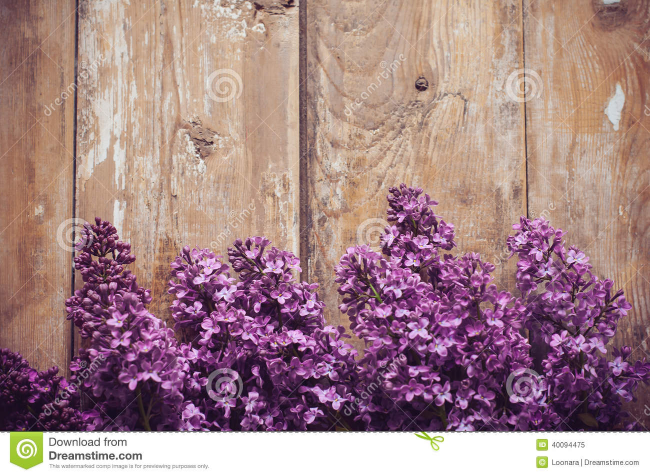 Lilac Flowers Background Stock Image Image Of Decoration 40094475