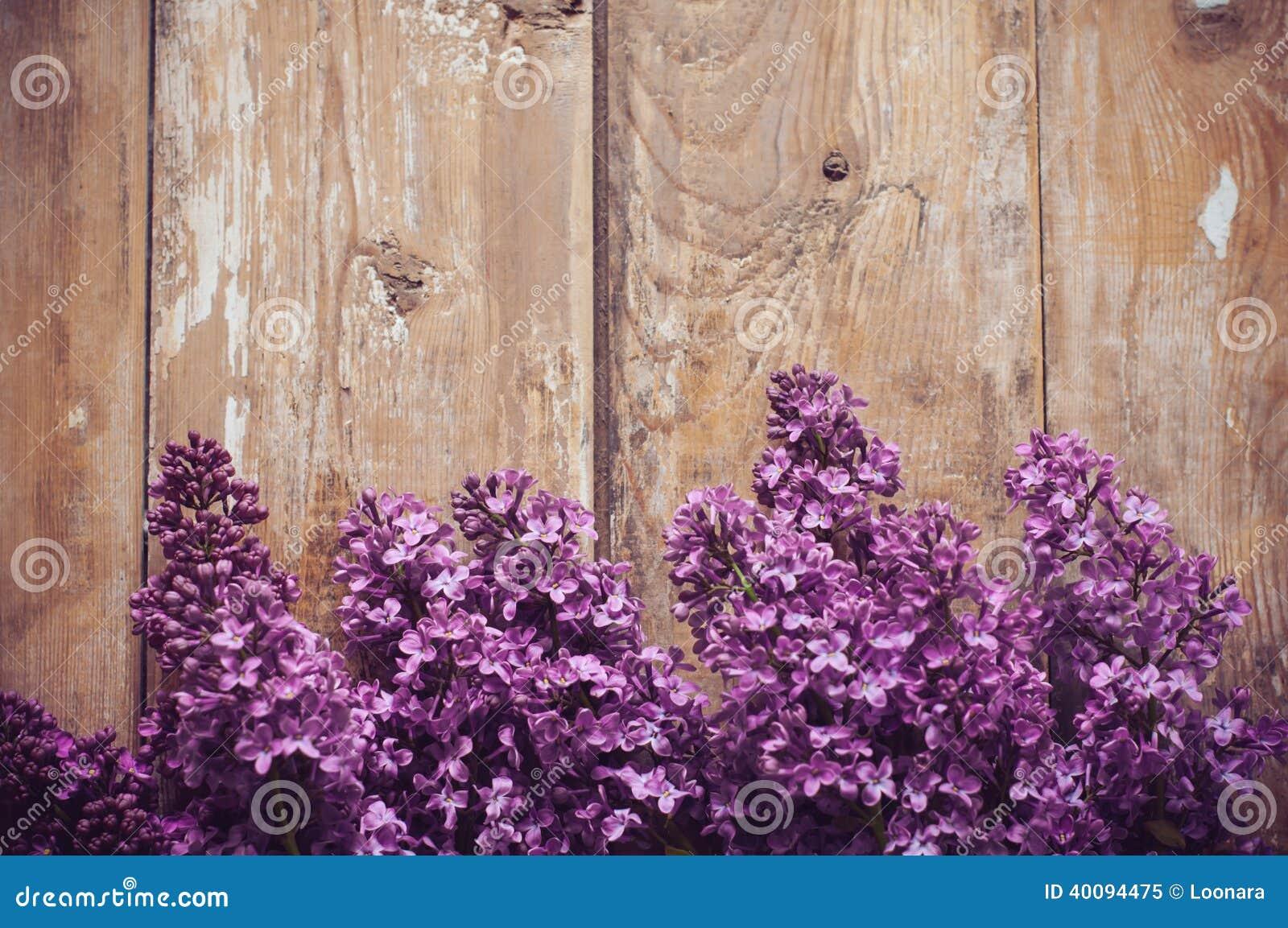 Lilac Flowers Background Stock Photo Image 40094475