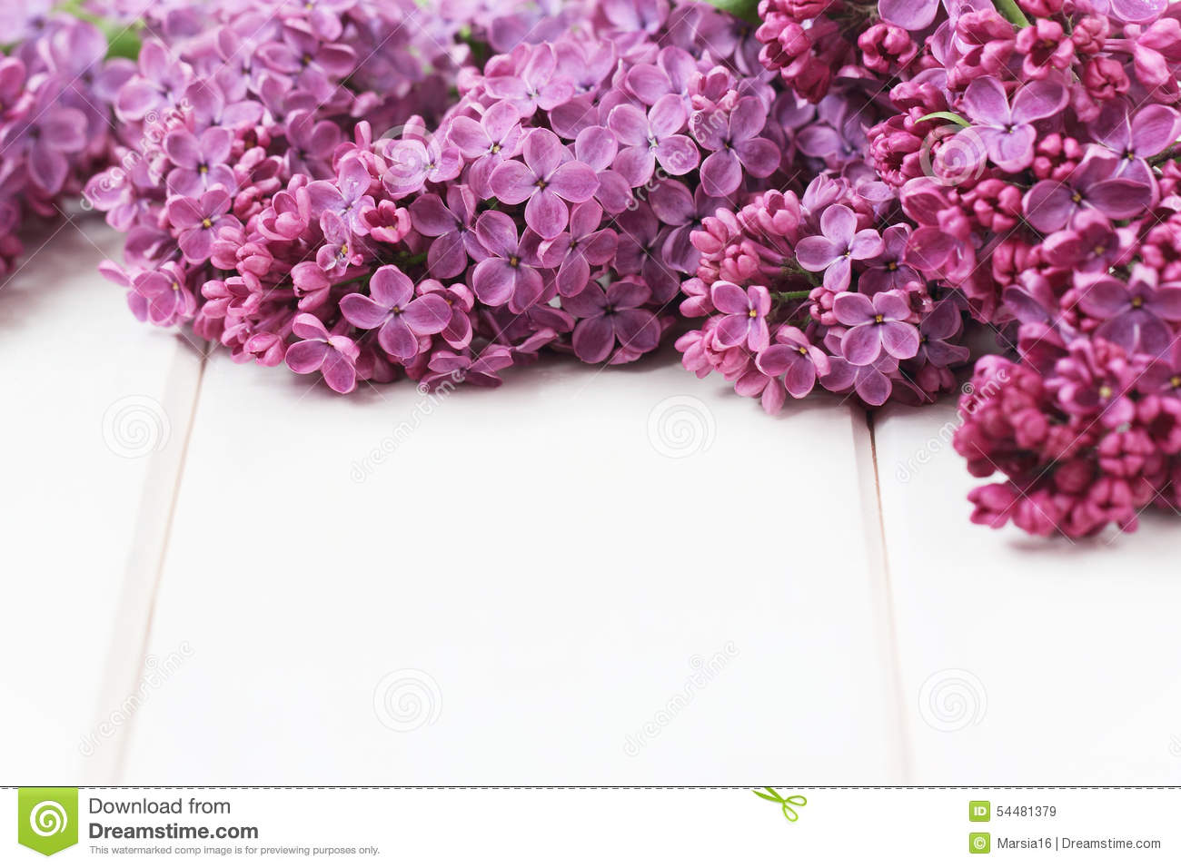 Lilac Flowers Bouquet stock image. Image of beautiful - 54481379
