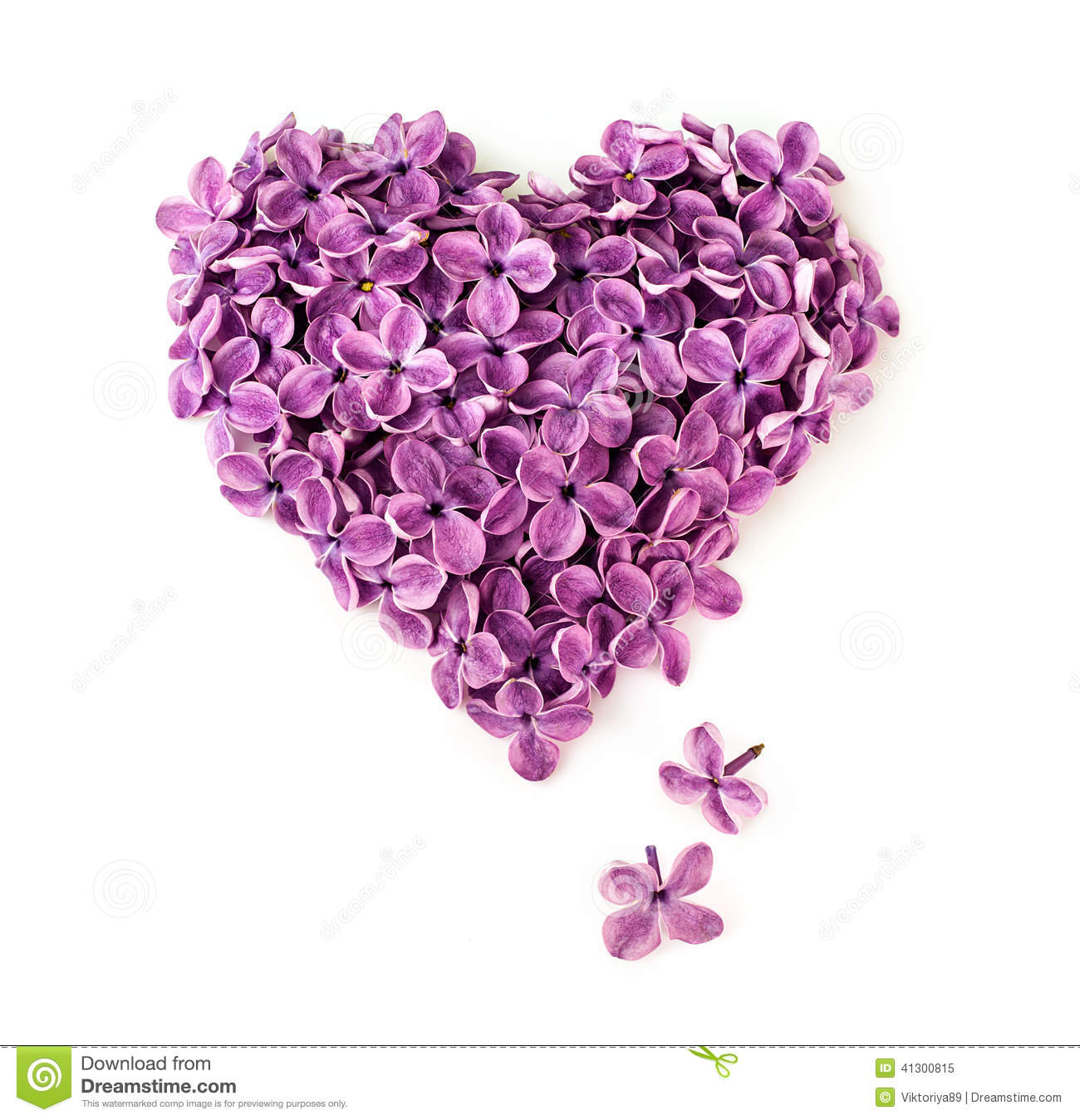 Lilac Flowers In Shape Of Heart Stock Photo - Image: 41300815