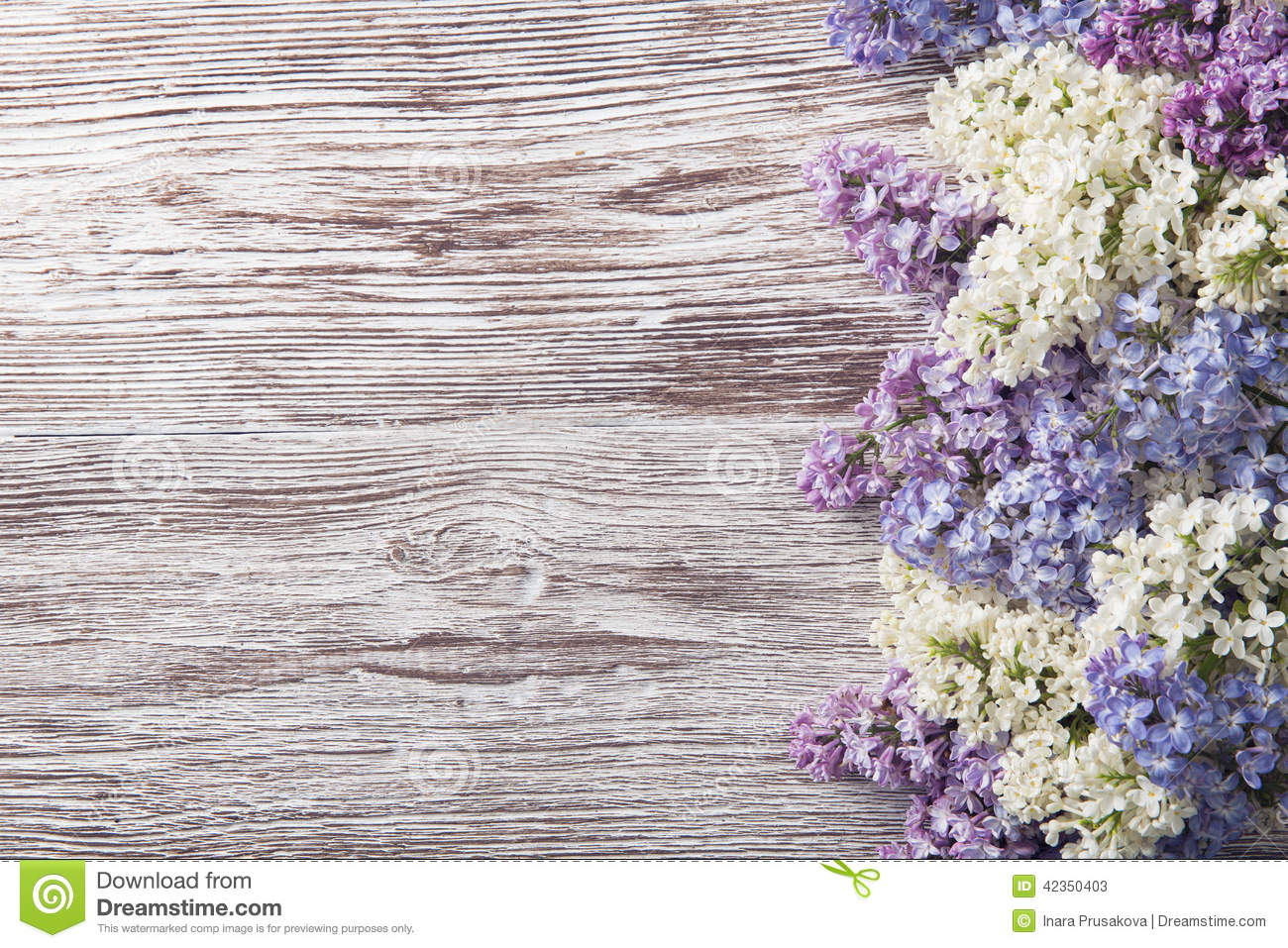 Lilac Flowers On Wood Background Blossom Branch On