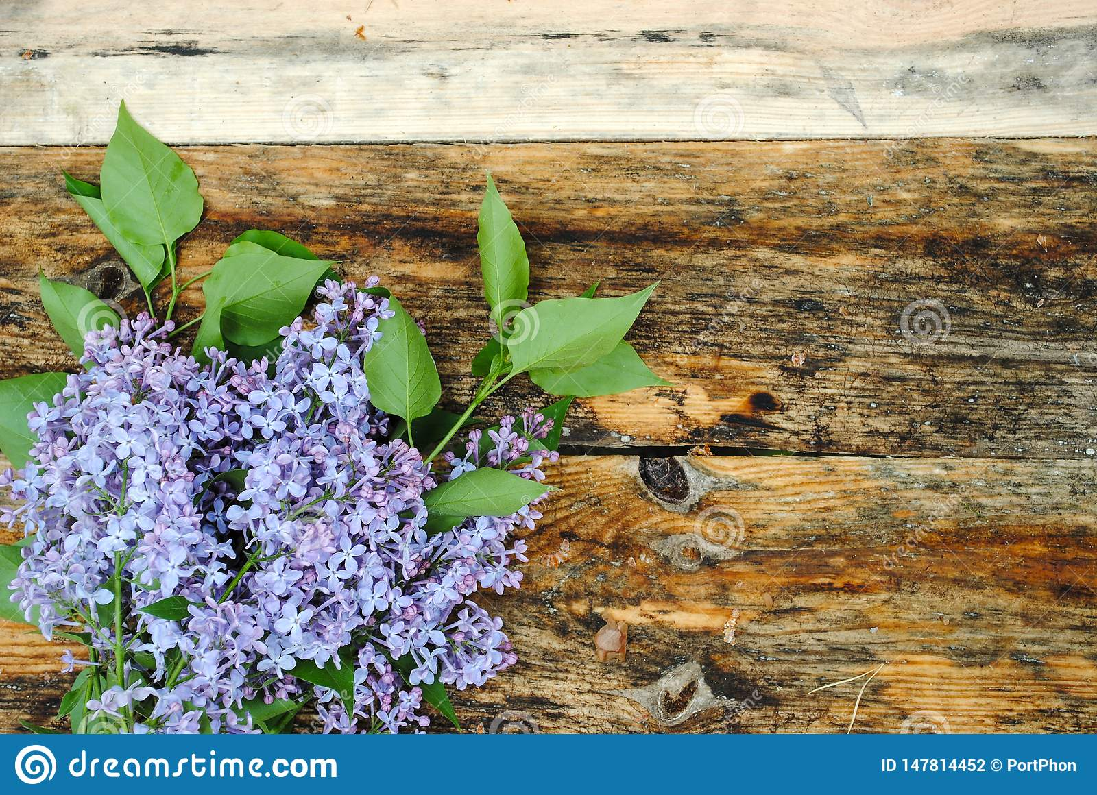 Lilac flowers on wooden table