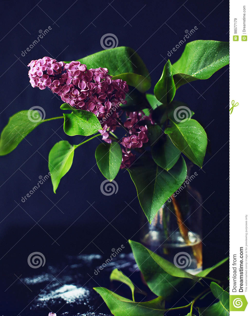 lilac in a glass vase