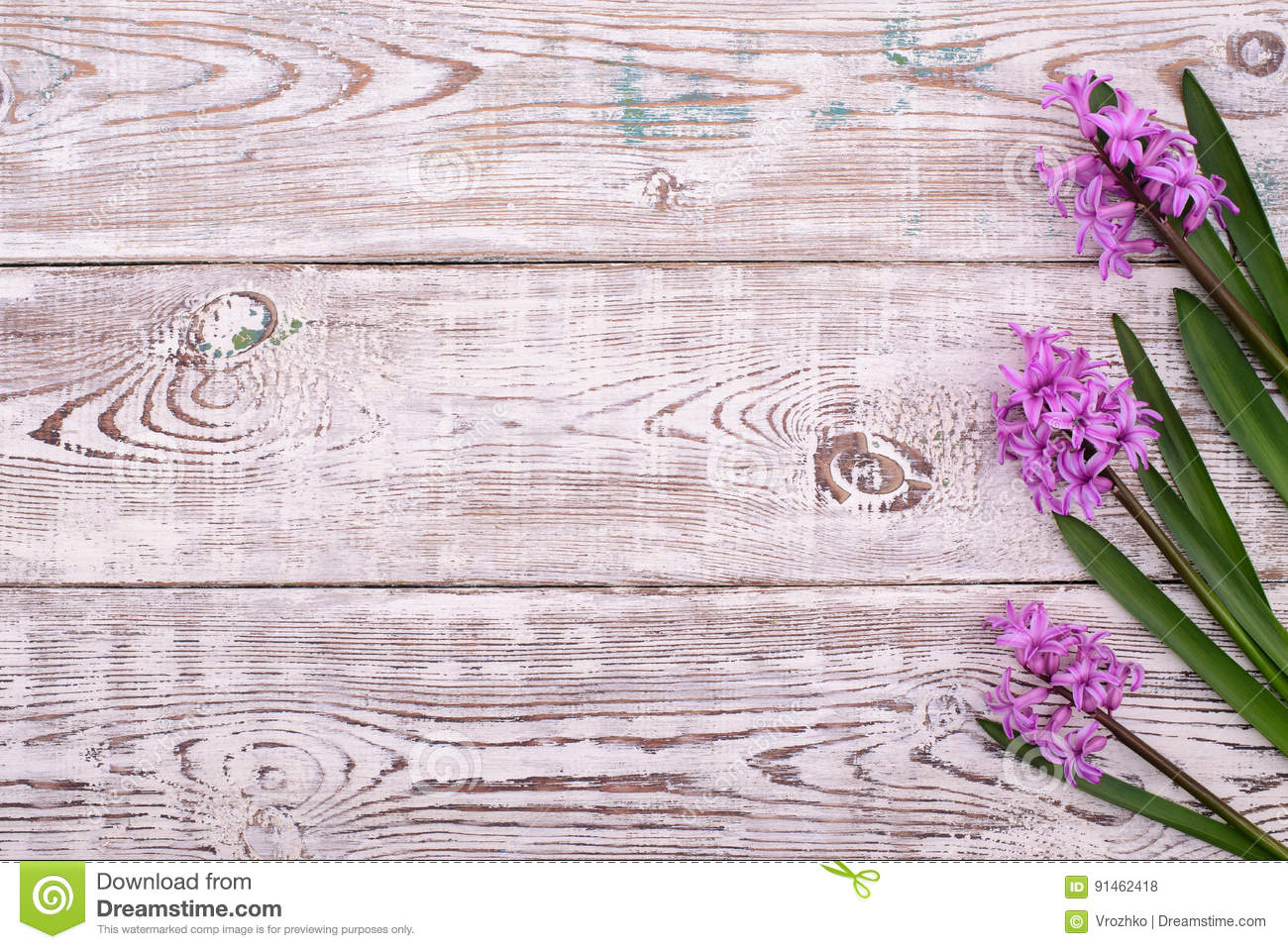 Download Lilac Spring Flowers Border On Wooden Rustic Table Above View Stock Photo