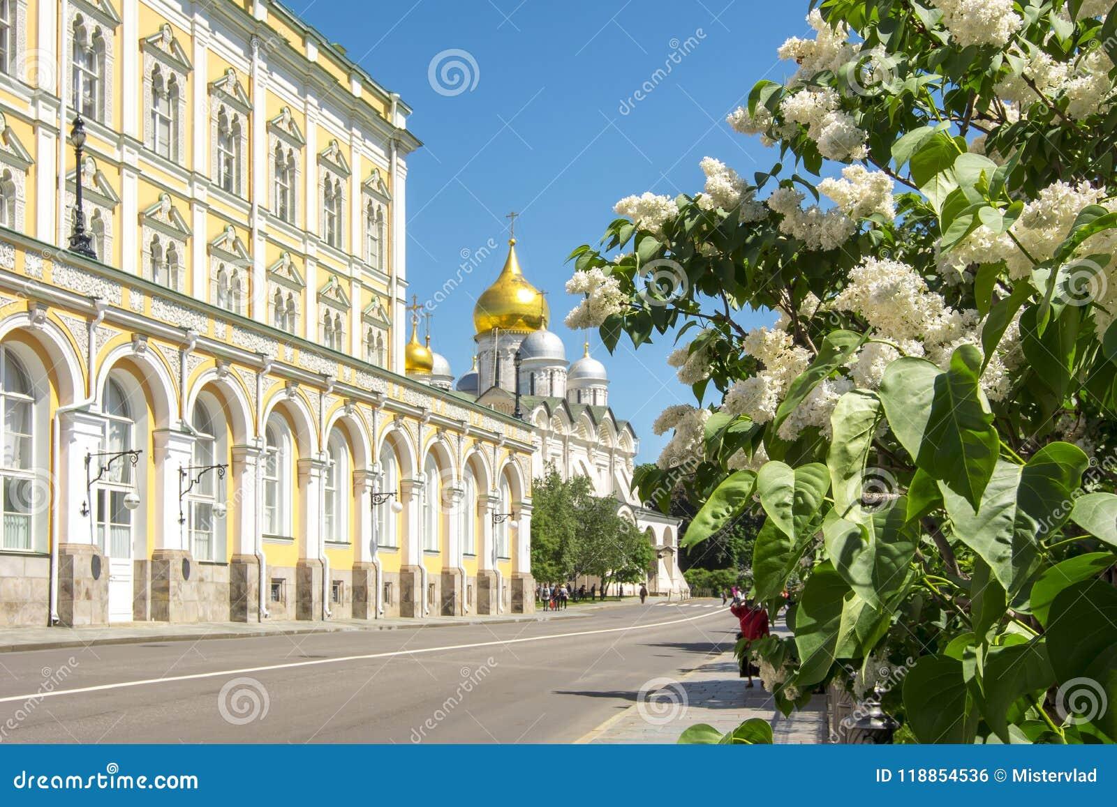 Lilan blommar att blomma i MoskvaKreml, Ryssland
