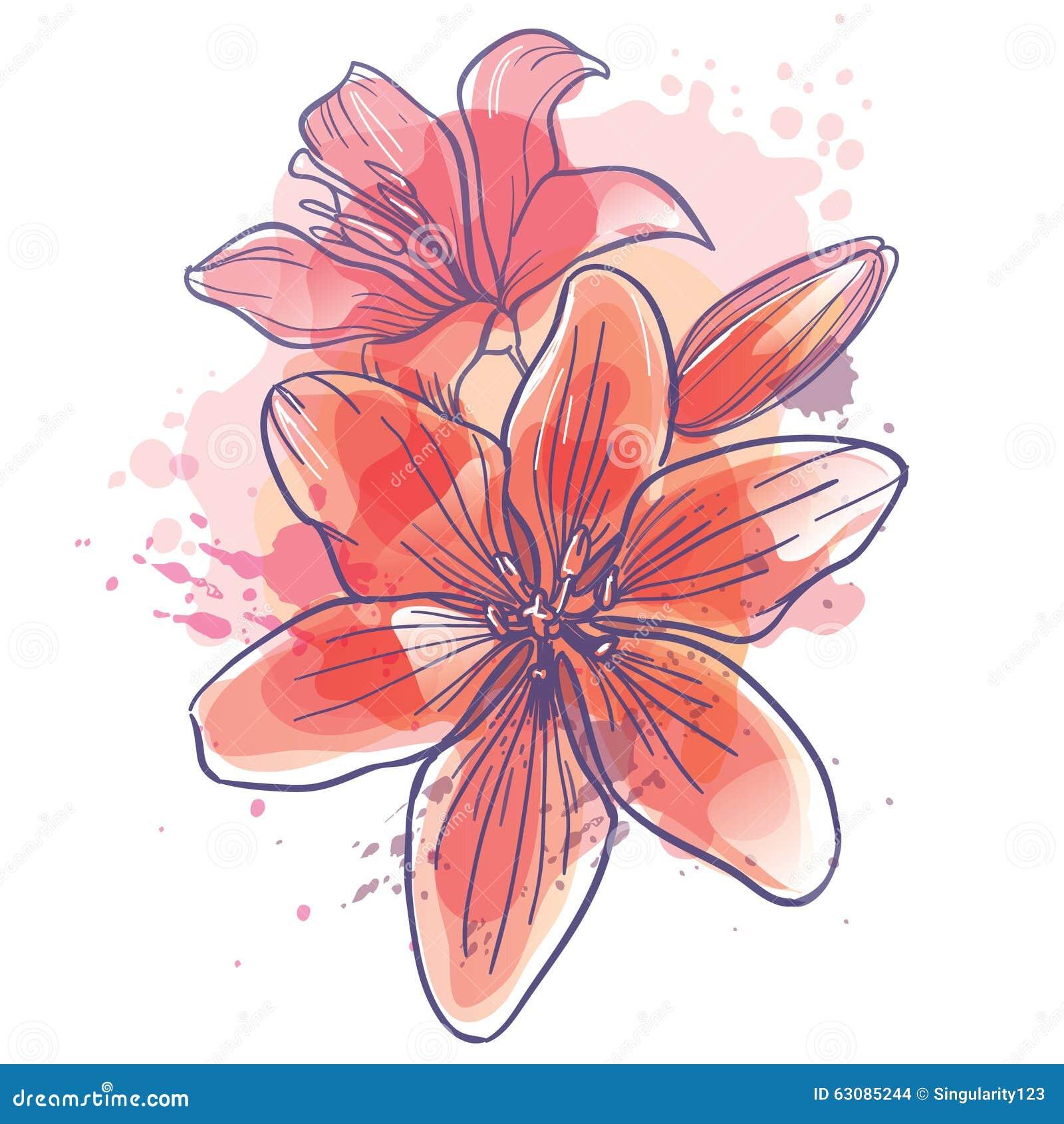 Download Lilly Fleurit L'illustration De Vecteur Illustration de Vecteur - Illustration du couleur, ressort: 63085244
