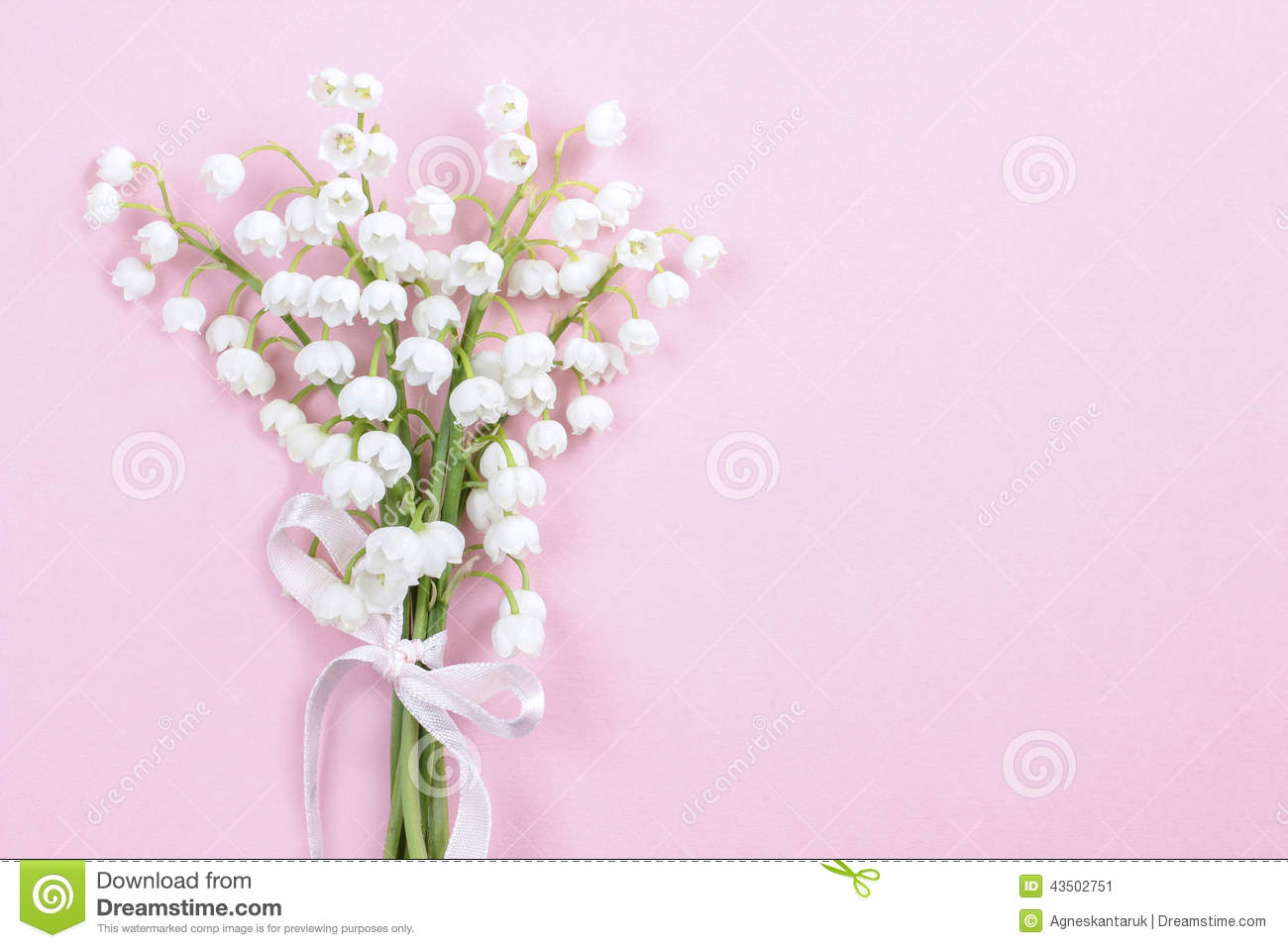 Lilly of the valley flowers on bright pink background stock image royalty free stock photo izmirmasajfo Choice Image