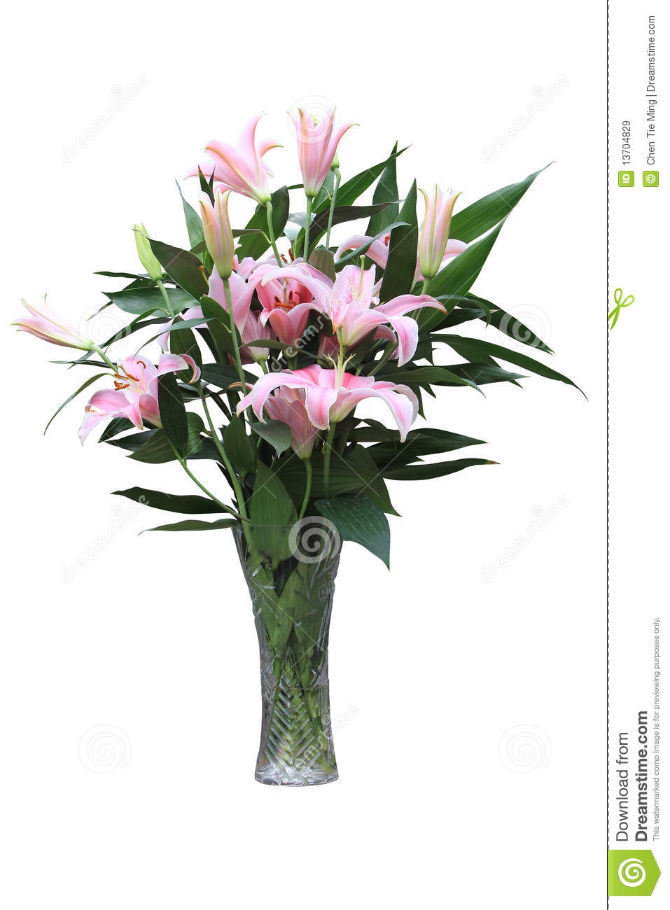 Lily Stock Image Image Of Decoration Lucky Flower 13704829
