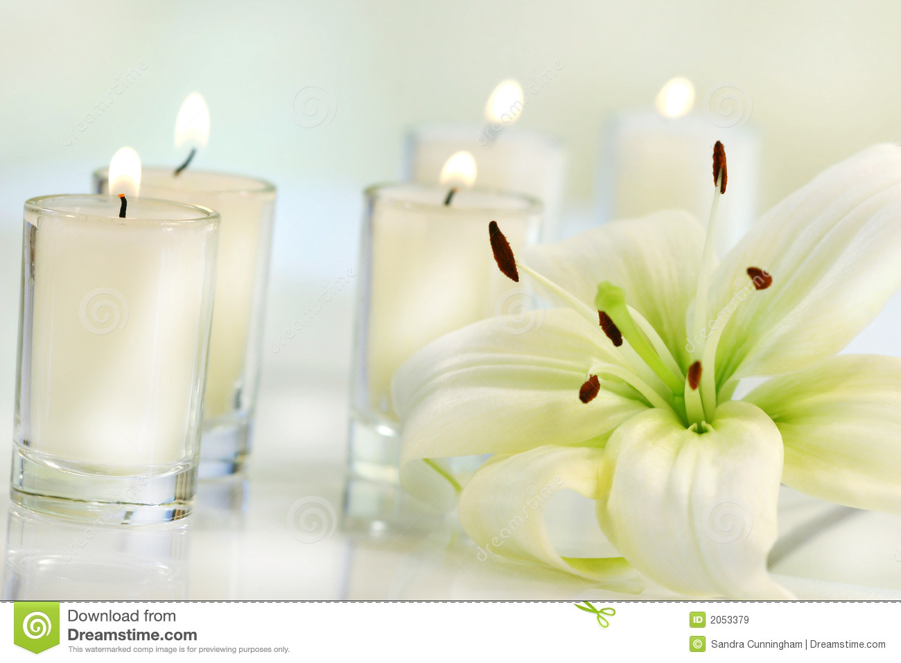 lily flower with candle royalty free stock images image easter lily clip art free easter lily clip art black and white