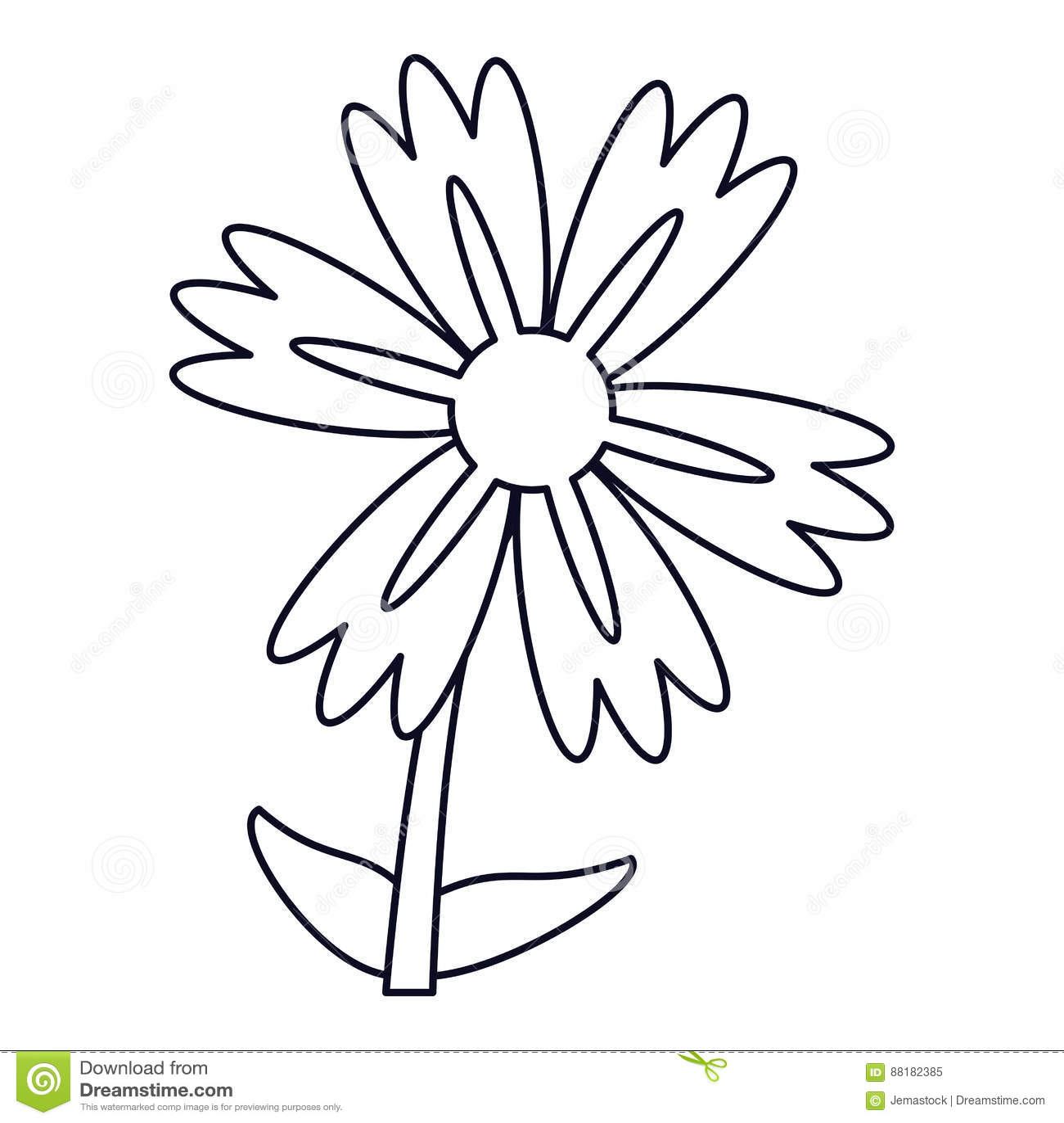 Lily Flower Natural Outline Stock Illustration Illustration Of