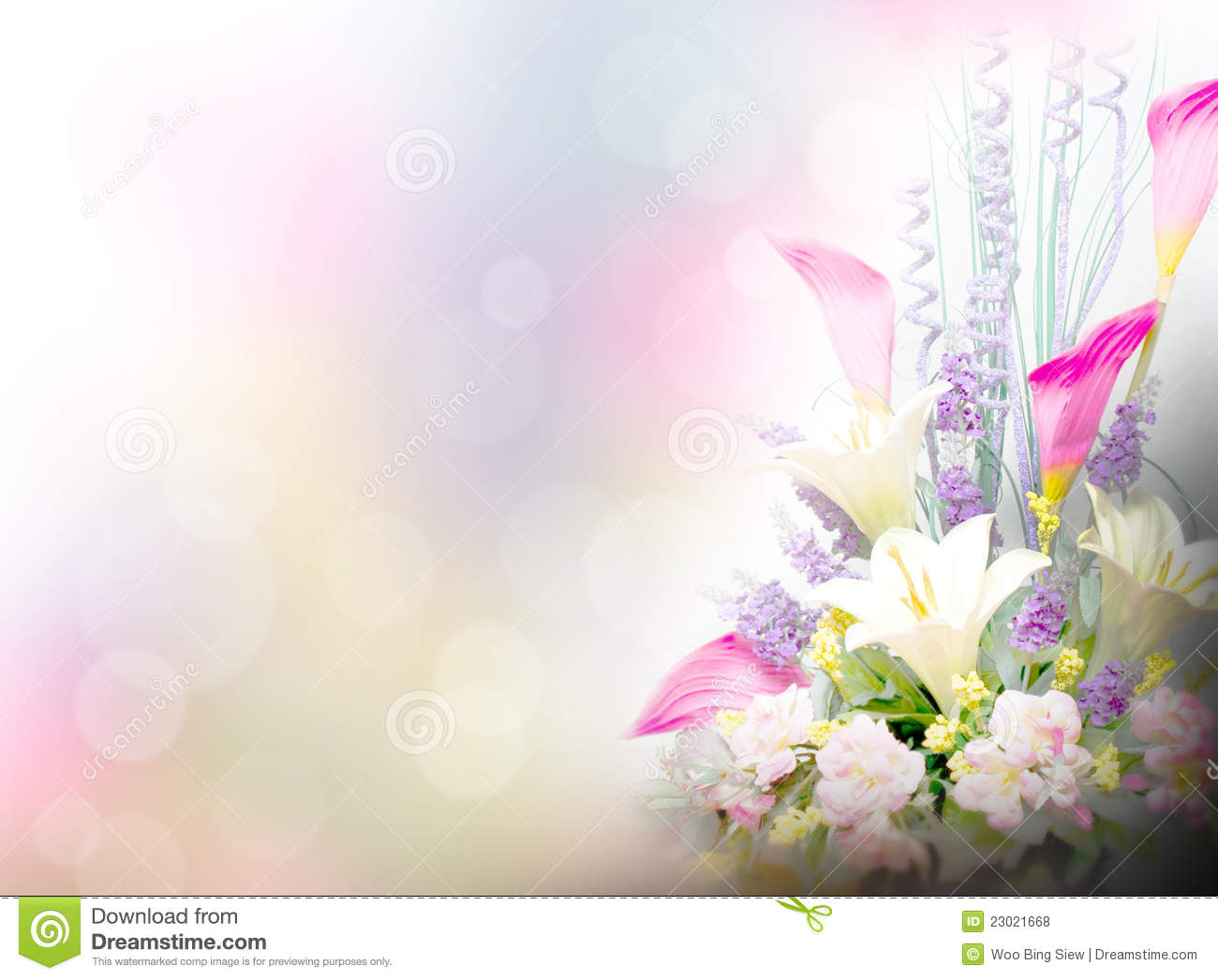 Lily Flowers Background Stock Photo Image Of Lighting 23021668