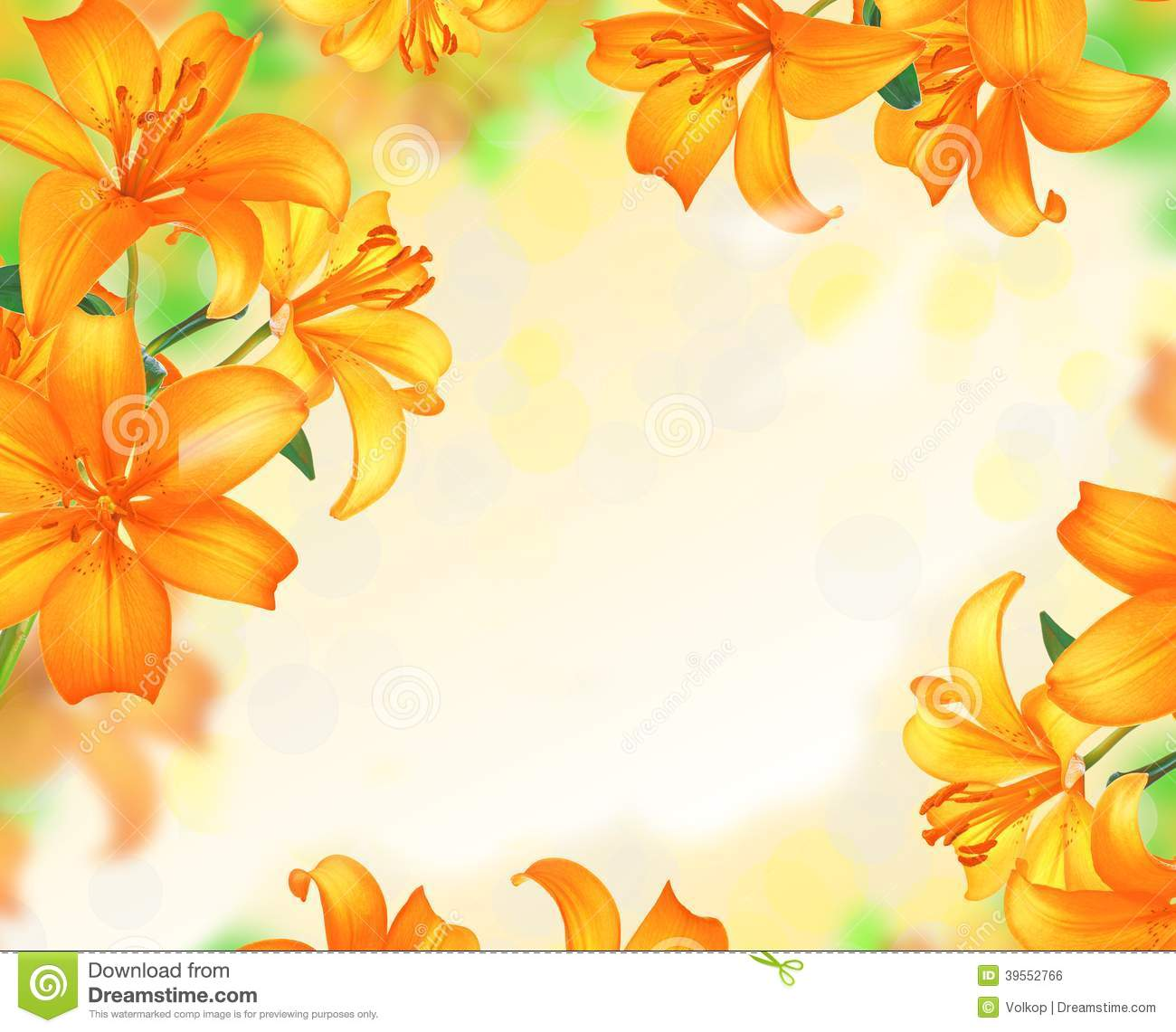 Lily Flowers Border Design Stock Photo Image Of Color Bloom