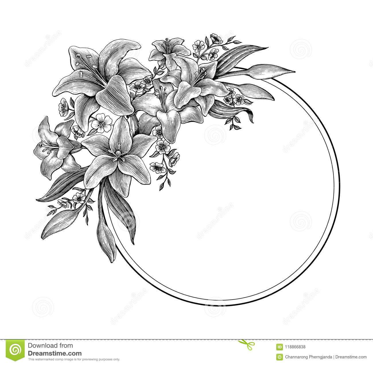 Lily Flowers Hand Drawing Vintage Black And White Clip Art For M