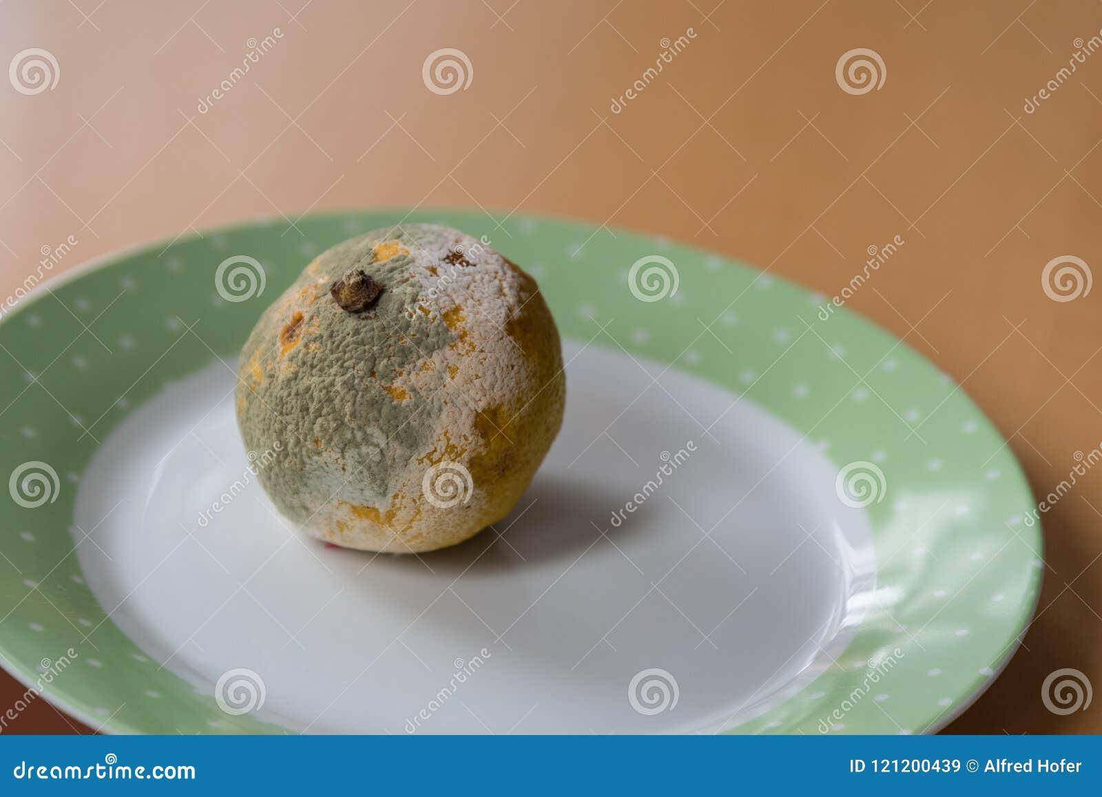 Limão mofado - molde no alimento