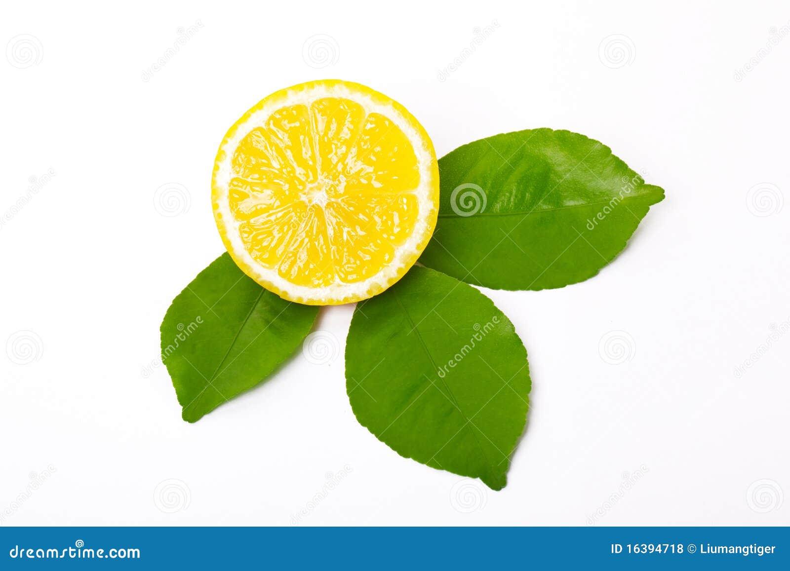 Limón y hojas rebanados del limón