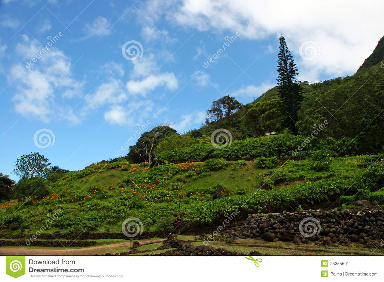 Limahuli Garden And Preserve Stock Image Image 25355501