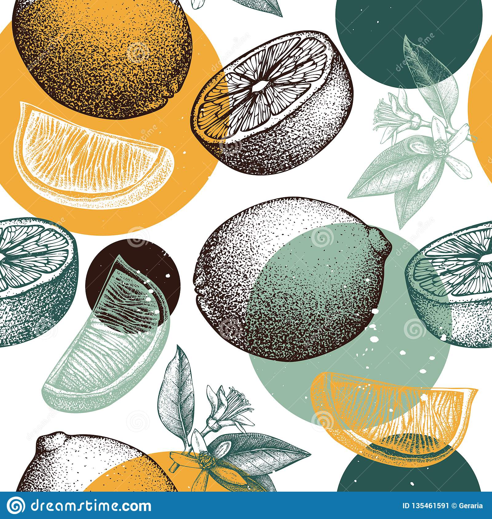 Vector seamless pattern with ink hand drawn orange fruit, flowers and leaves sketch. Vintage citrus background isolated on white