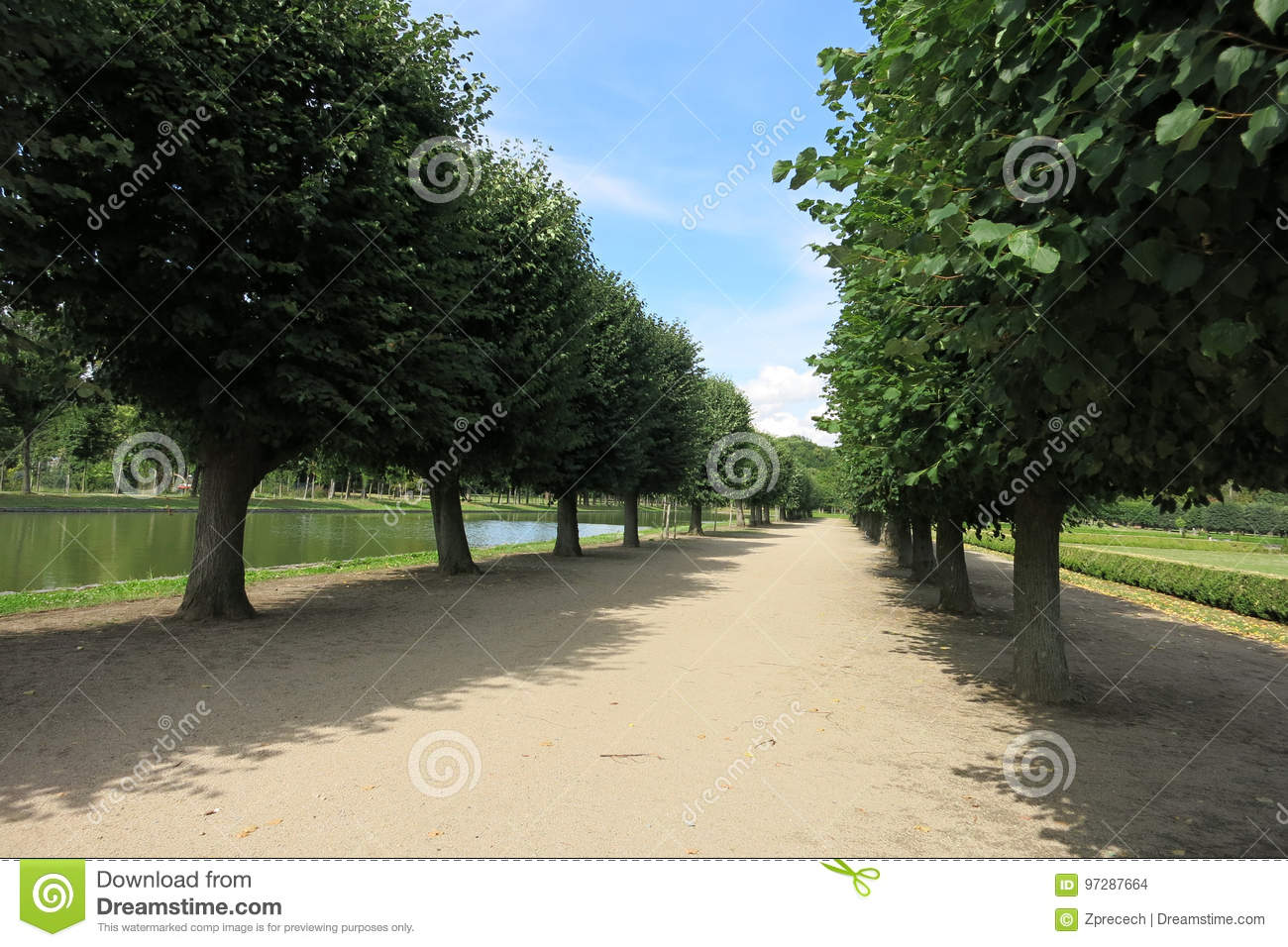 Lime tree alley