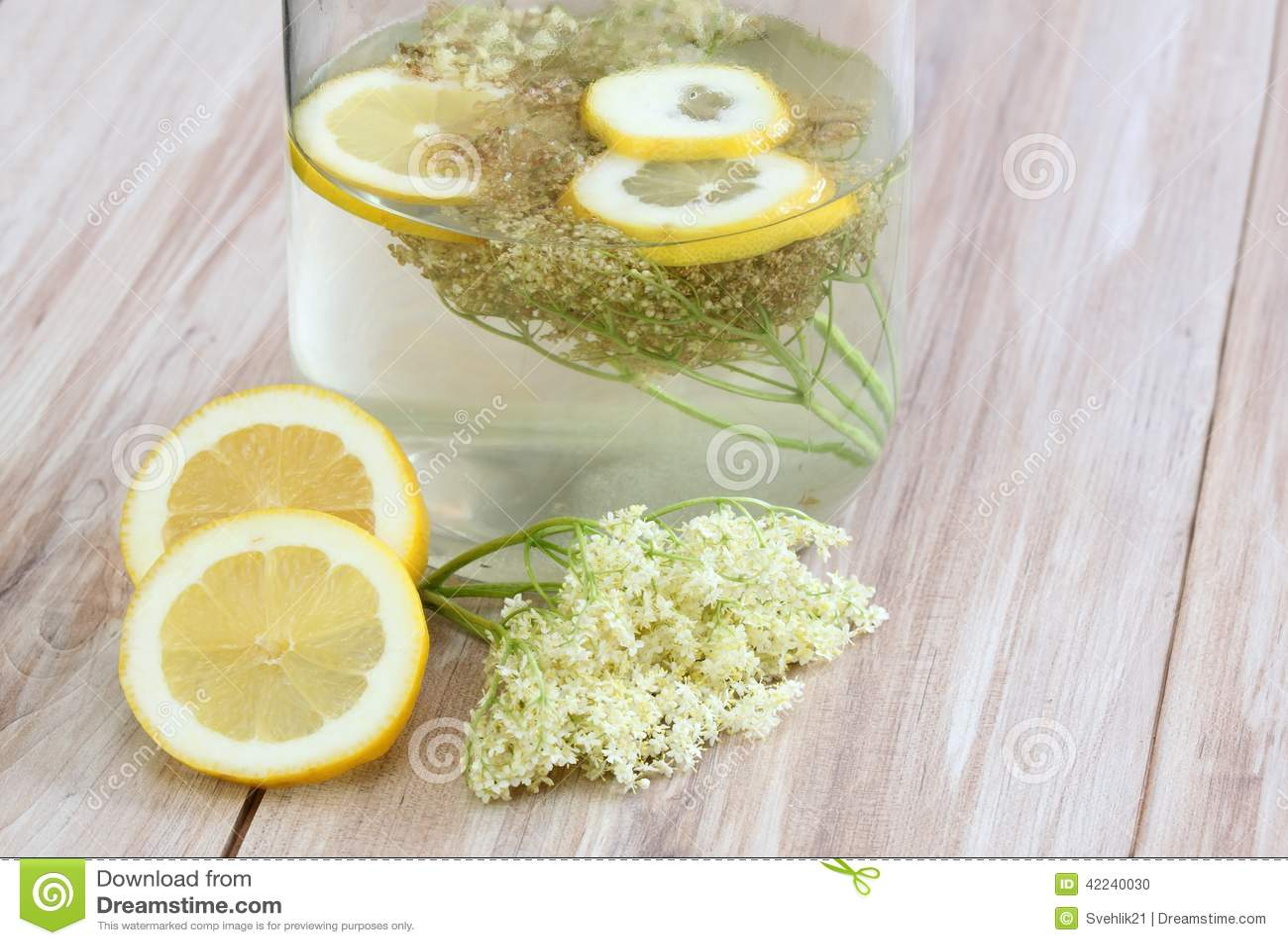 limonade de fleur de sureau nigra de sambucus photo stock image 42240030. Black Bedroom Furniture Sets. Home Design Ideas